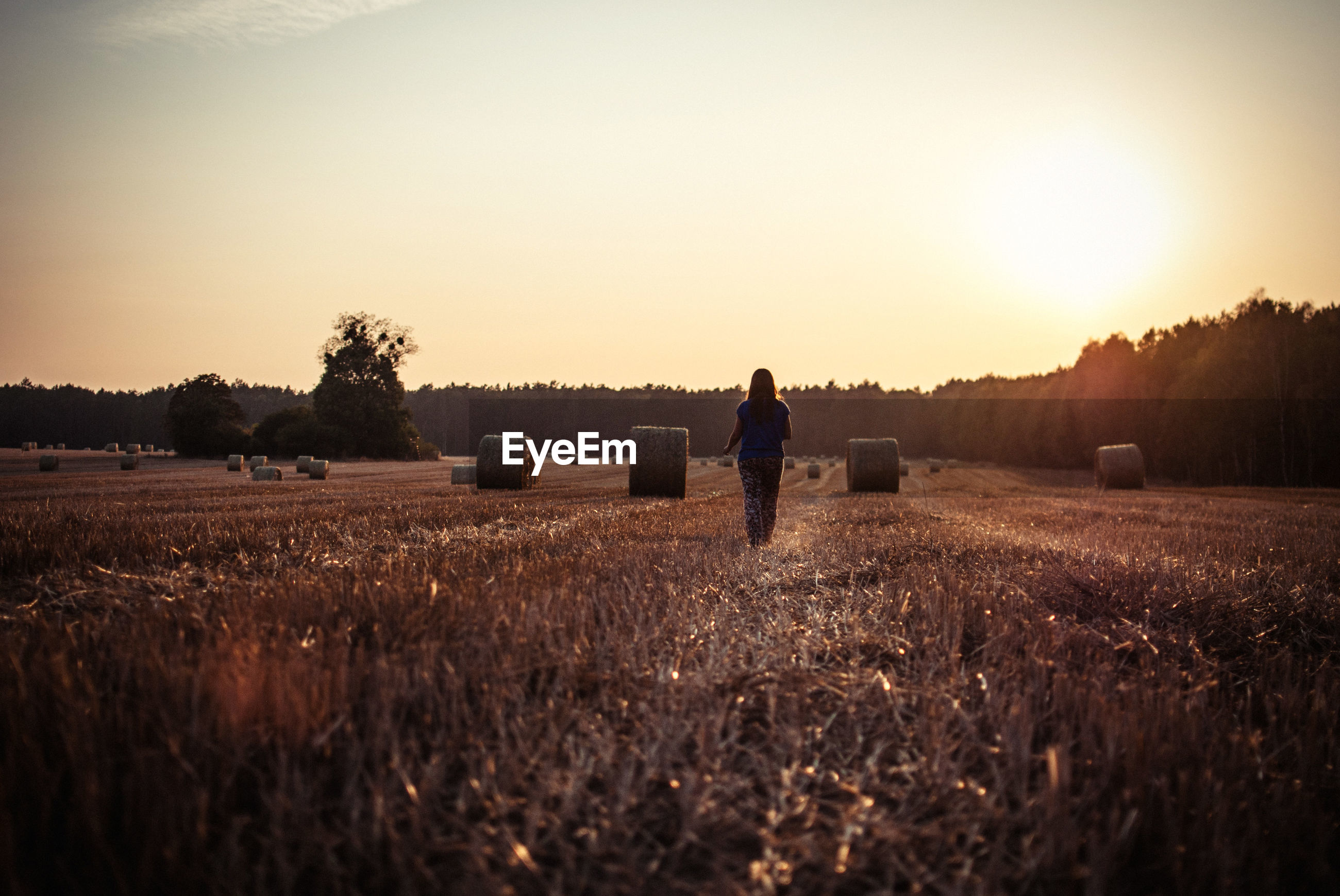 Rear view of woman walking by hay bales on field during sunset