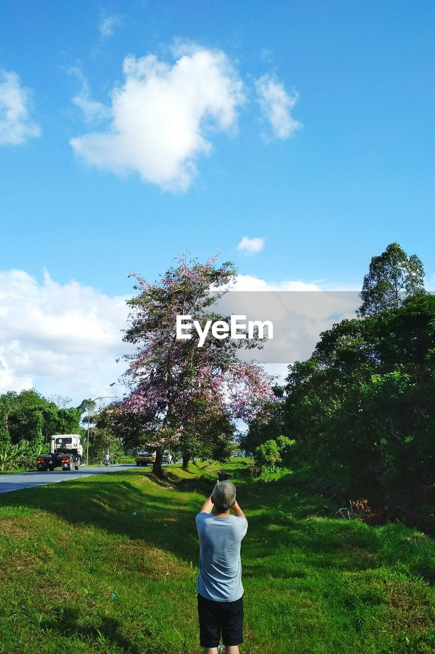 plant, sky, tree, rear view, cloud - sky, real people, one person, nature, day, leisure activity, casual clothing, grass, lifestyles, standing, land, land vehicle, growth, transportation, mode of transportation, outdoors