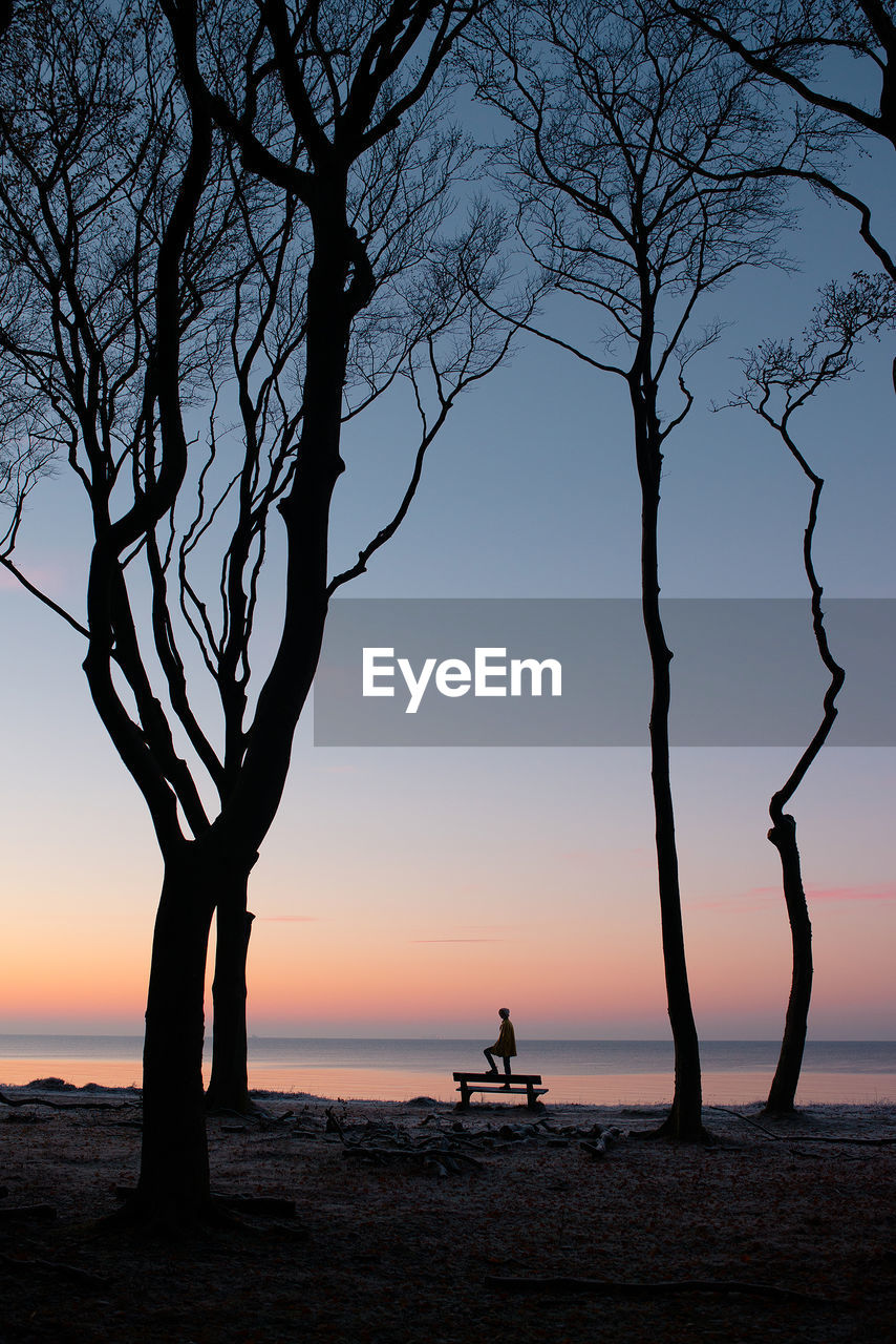 sunset, sky, silhouette, beauty in nature, water, tree, sea, scenics - nature, nature, bare tree, real people, horizon, tranquility, leisure activity, lifestyles, tranquil scene, land, plant, branch, horizon over water, outdoors