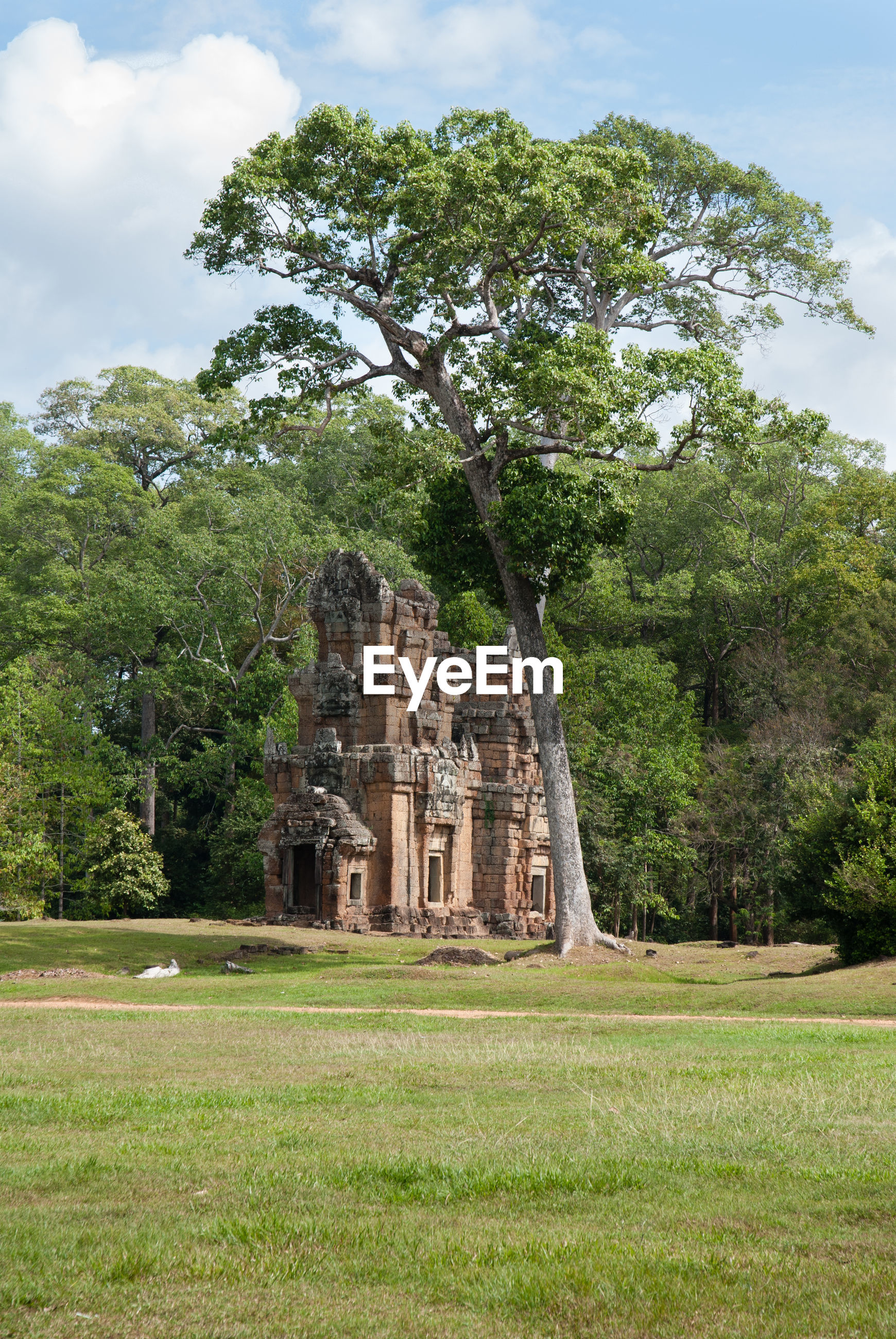 Old ruin on field against trees