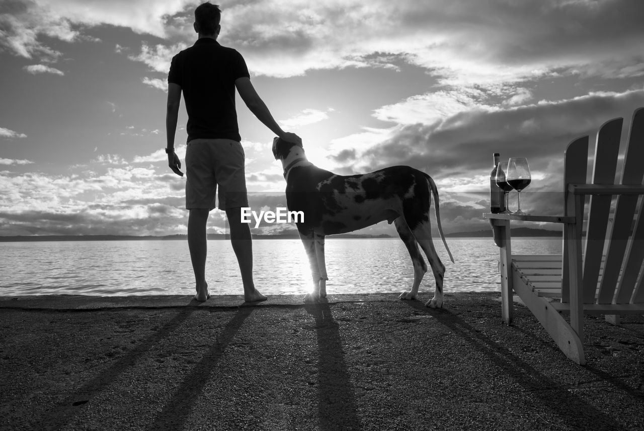 Rear view of man with dog standing by sea against sky