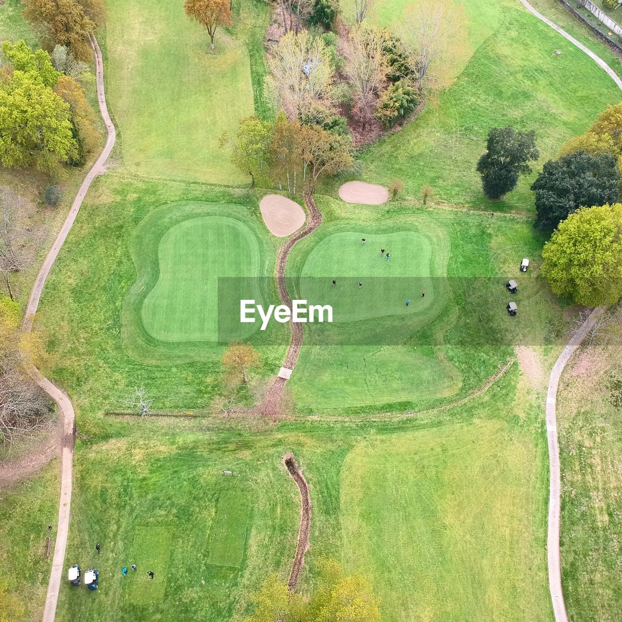 plant, green color, tree, day, grass, activity, golf, nature, no people, aerial view, outdoors, high angle view, beauty in nature, golf course, leisure activity, sport, growth, water, landscape, sand trap, green - golf course
