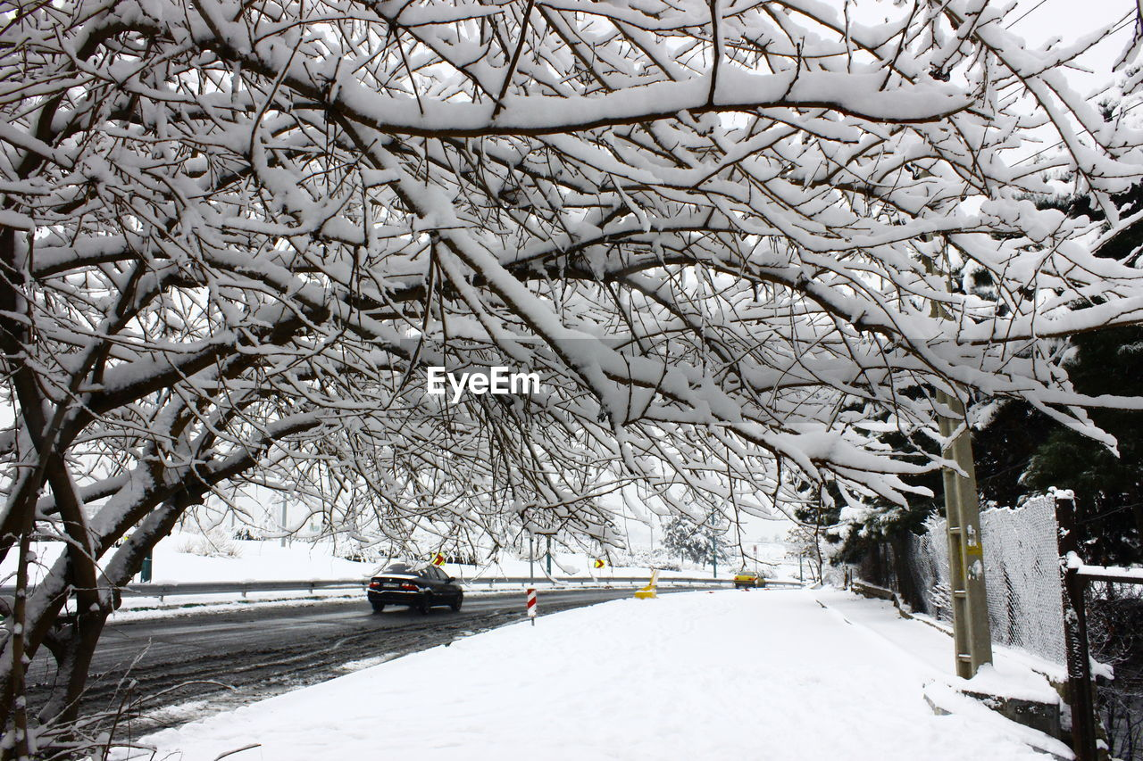 winter, snow, cold temperature, tree, nature, weather, car, transportation, branch, bare tree, white color, beauty in nature, outdoors, frozen, mode of transport, day, scenics, no people, land vehicle, sky