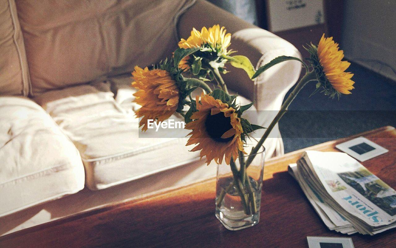 Sunflowers In Vase Indoors