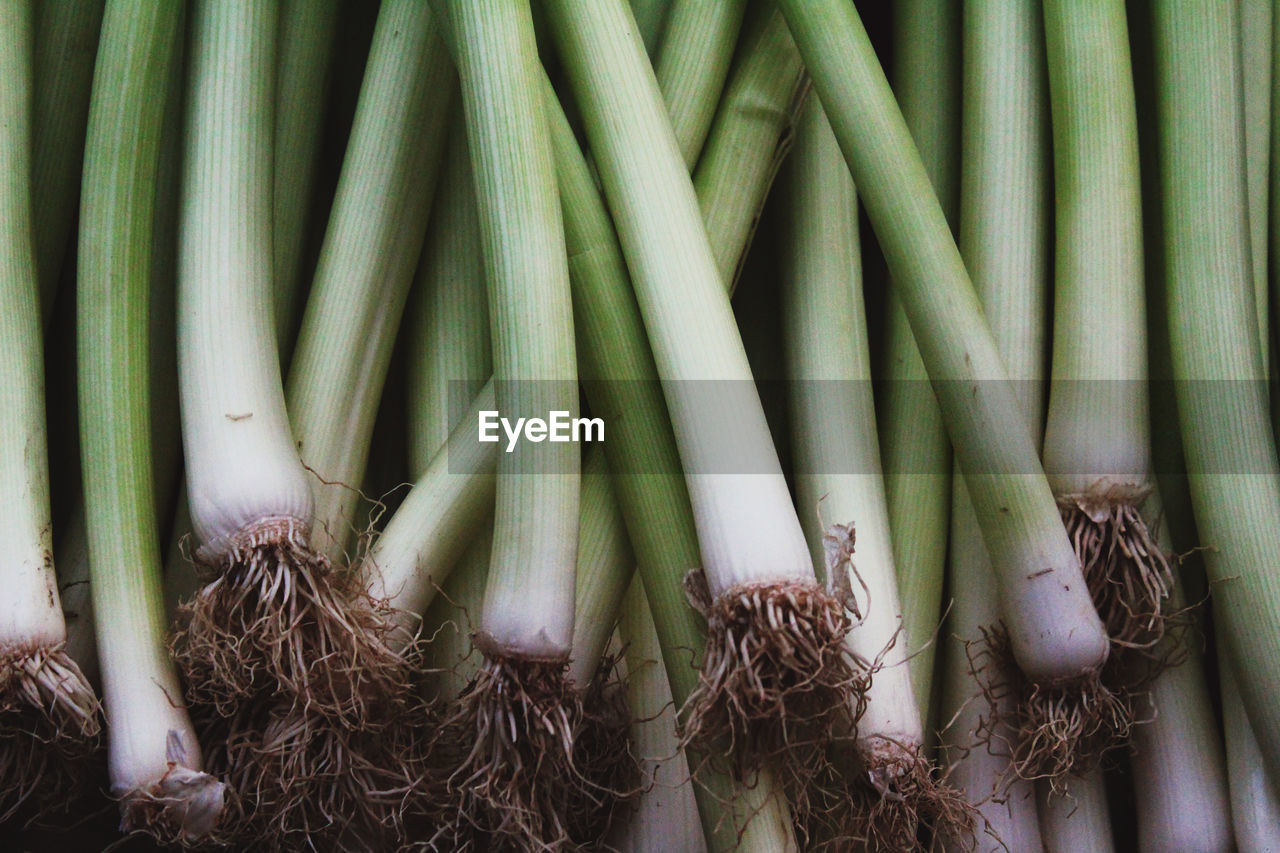 Full frame shot of spring onions for sale at market stall