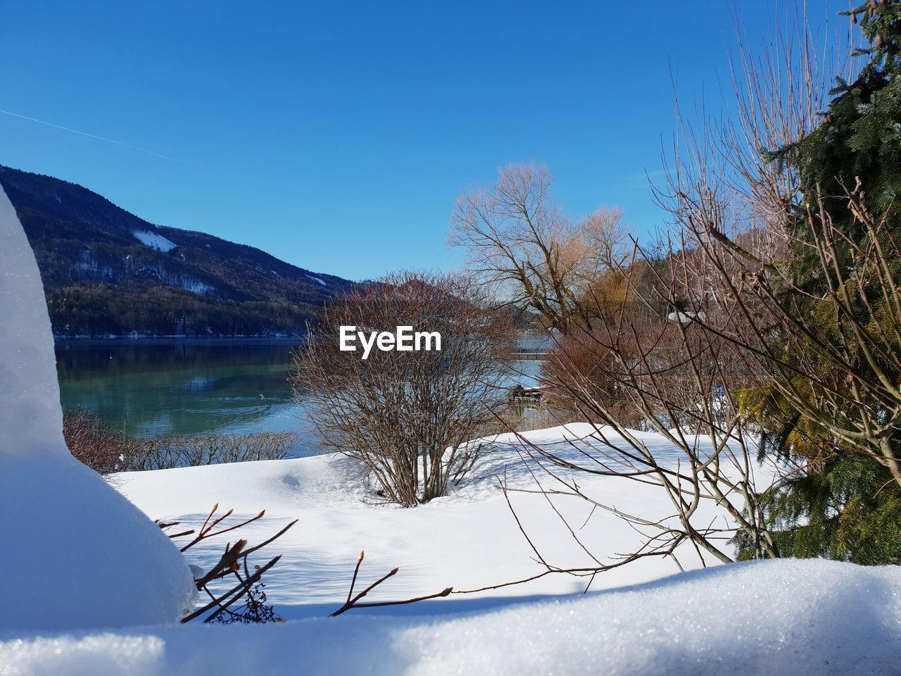 winter, cold temperature, tree, plant, snow, sky, tranquility, water, beauty in nature, scenics - nature, nature, mountain, tranquil scene, day, lake, blue, no people, non-urban scene, outdoors, snowcapped mountain