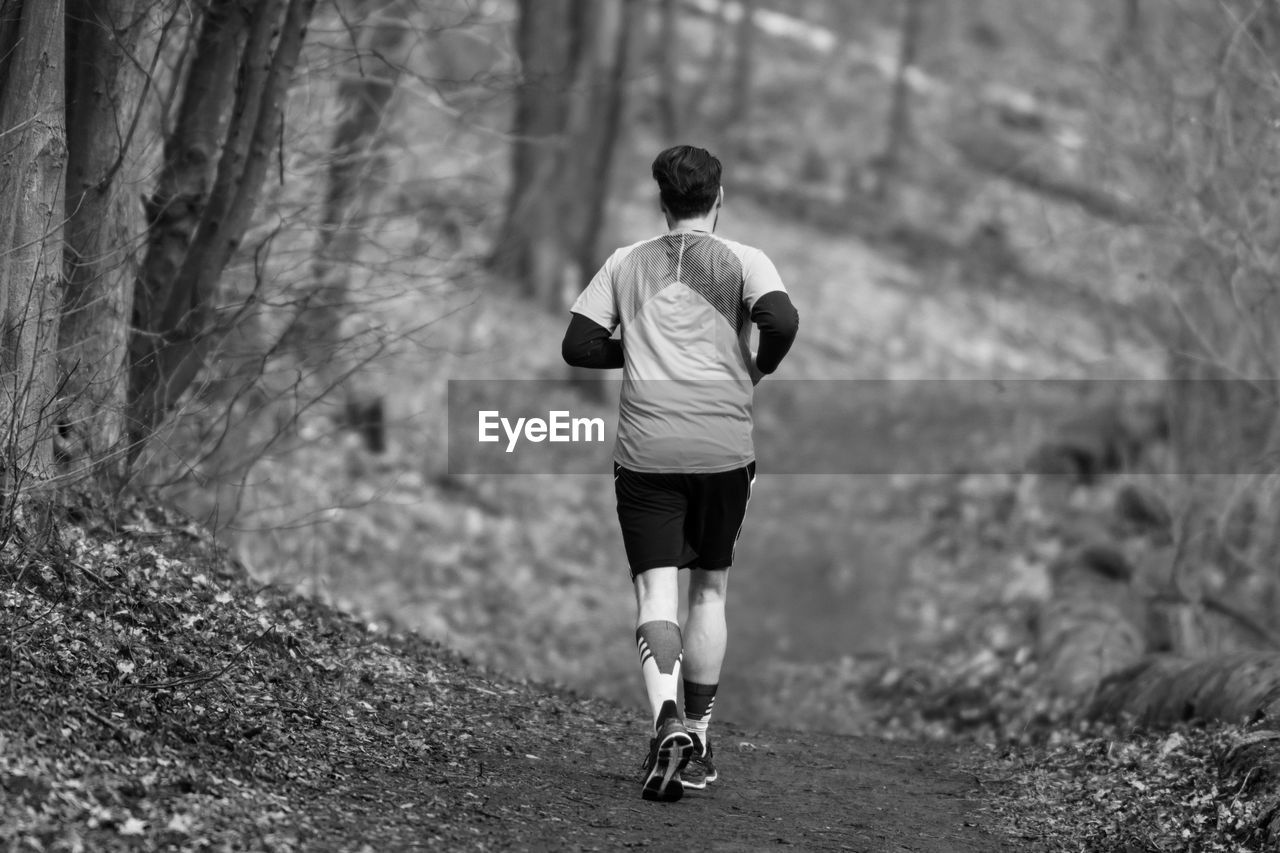 Rear View Of Man Jogging In Forest