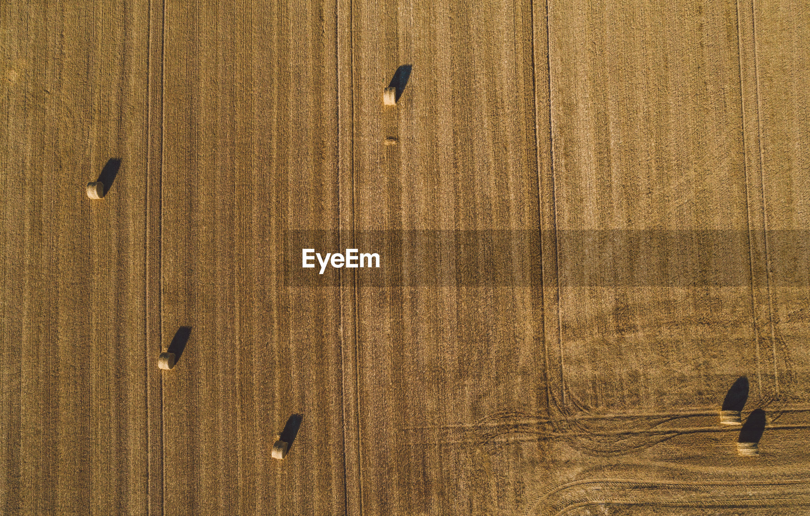 High angle view of hay bales on landscape