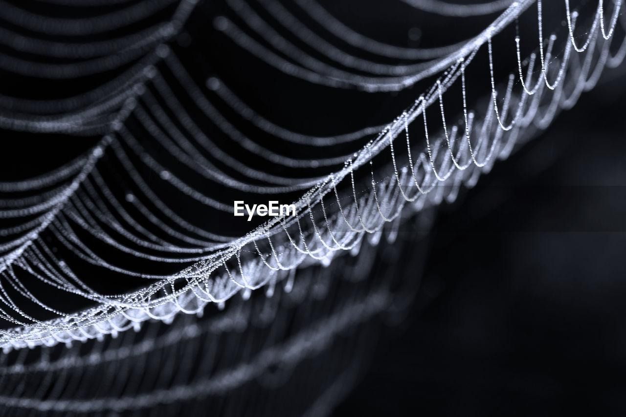 Close-Up Of Spider Web On Black Background