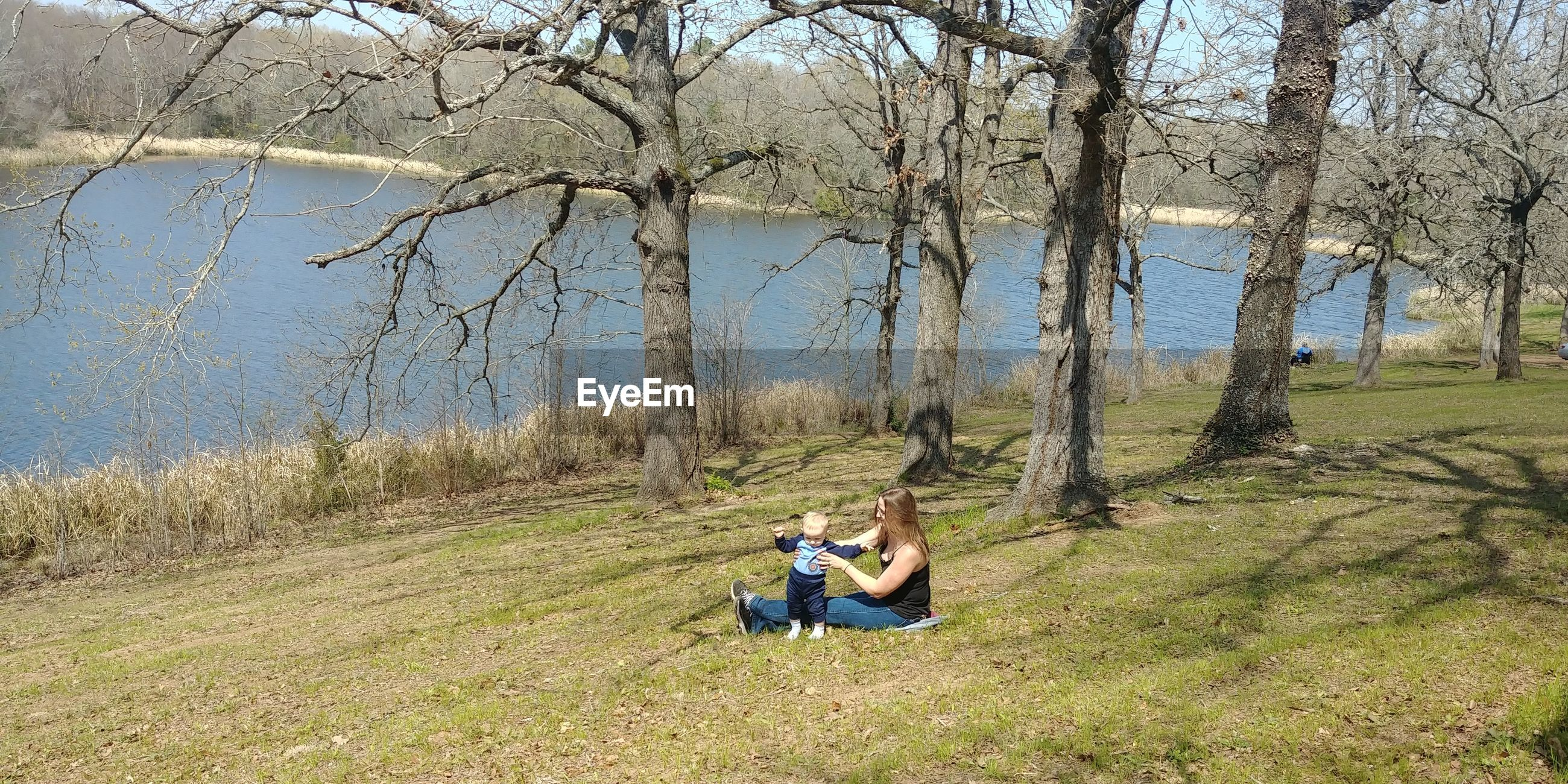 People sitting on grass by trees and lake