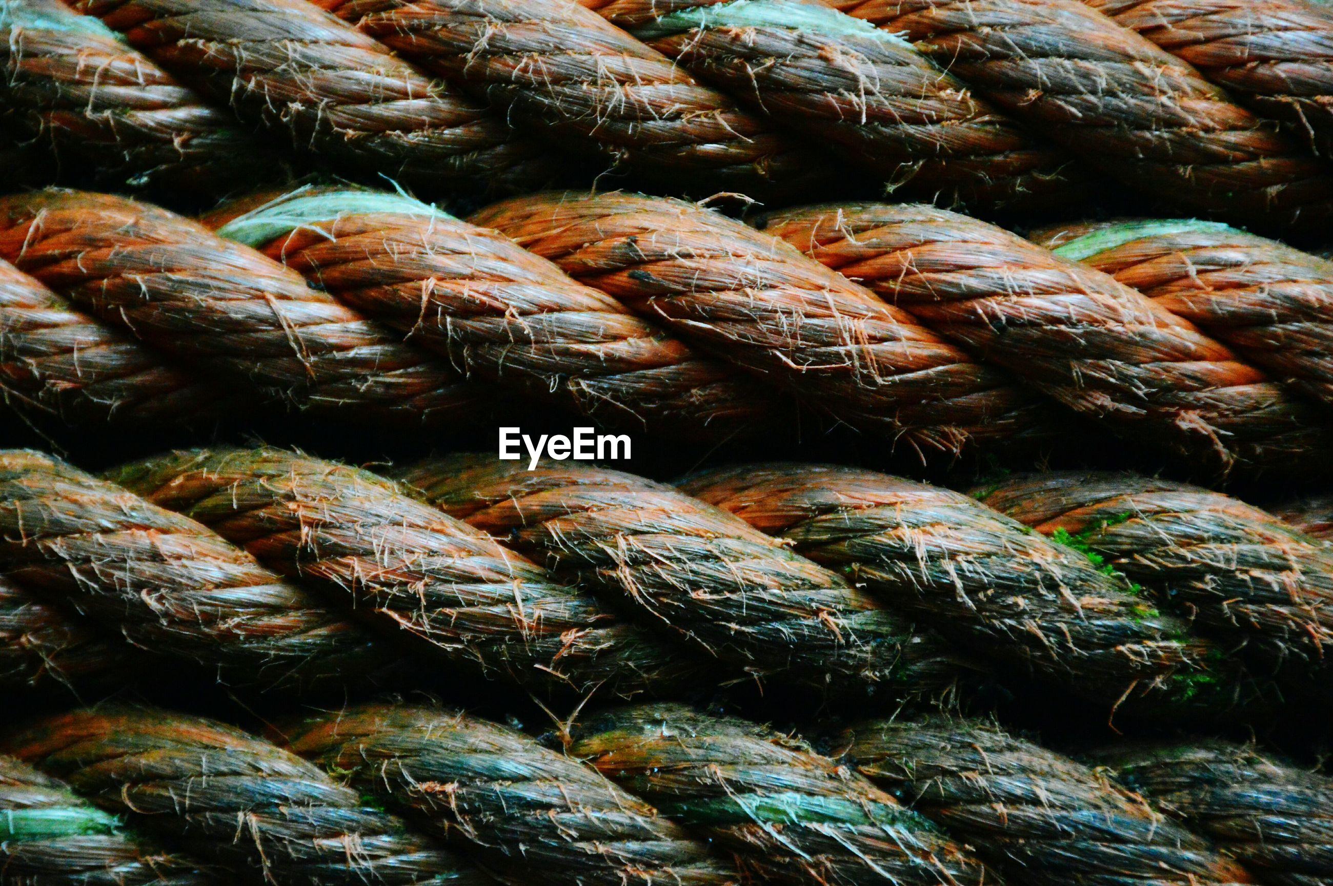 Full frame of rope