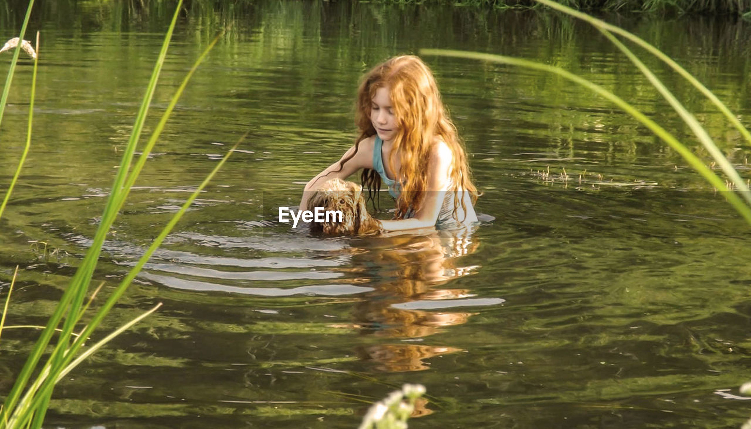 Girl bathing dog in lake