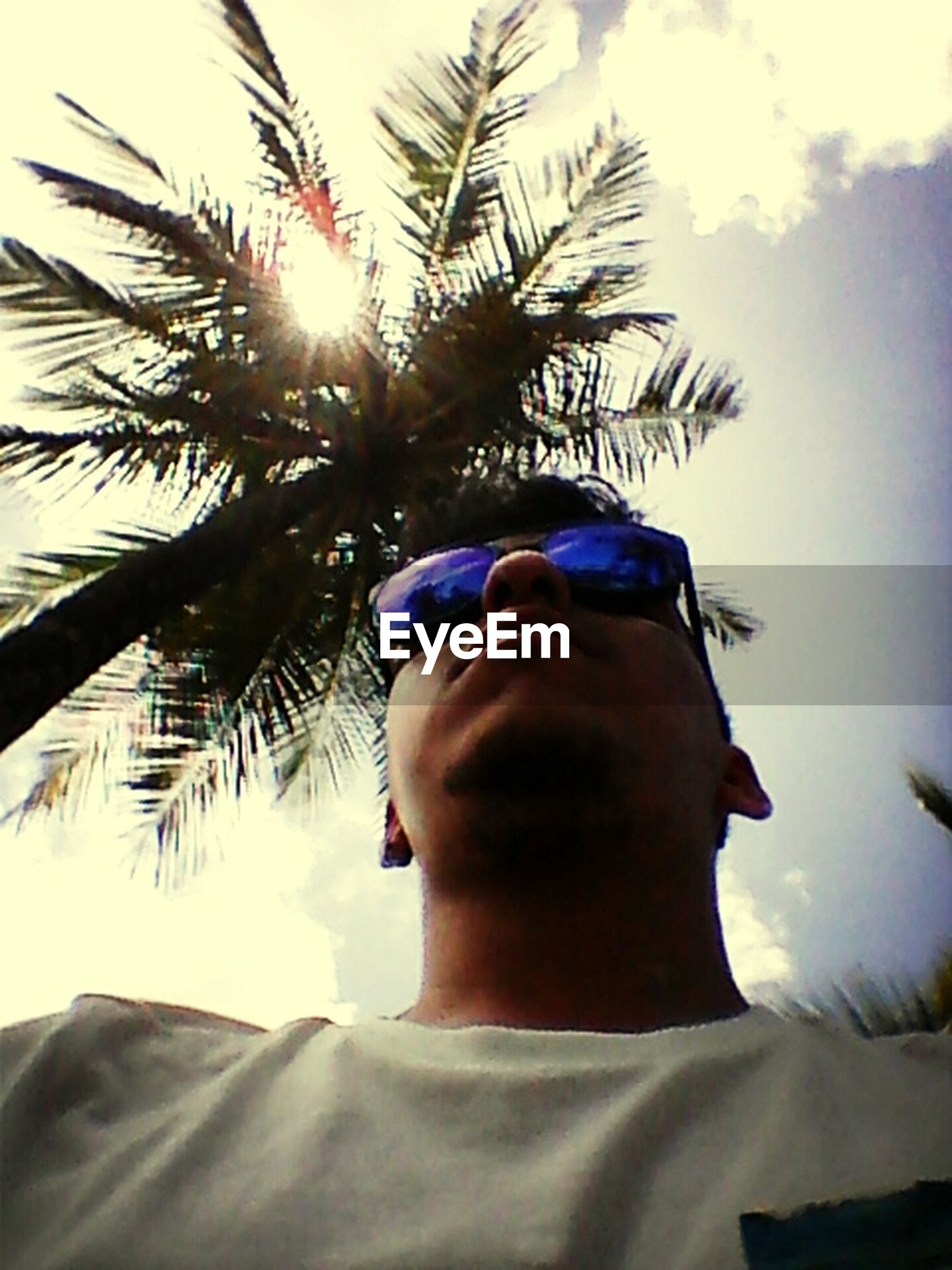 low angle view, palm tree, sky, tree, sunlight, one person, sunbeam, headshot, close-up, sun, portrait, horse, day, lens flare, outdoors, looking at camera, front view, blue, cloud, head and shoulders