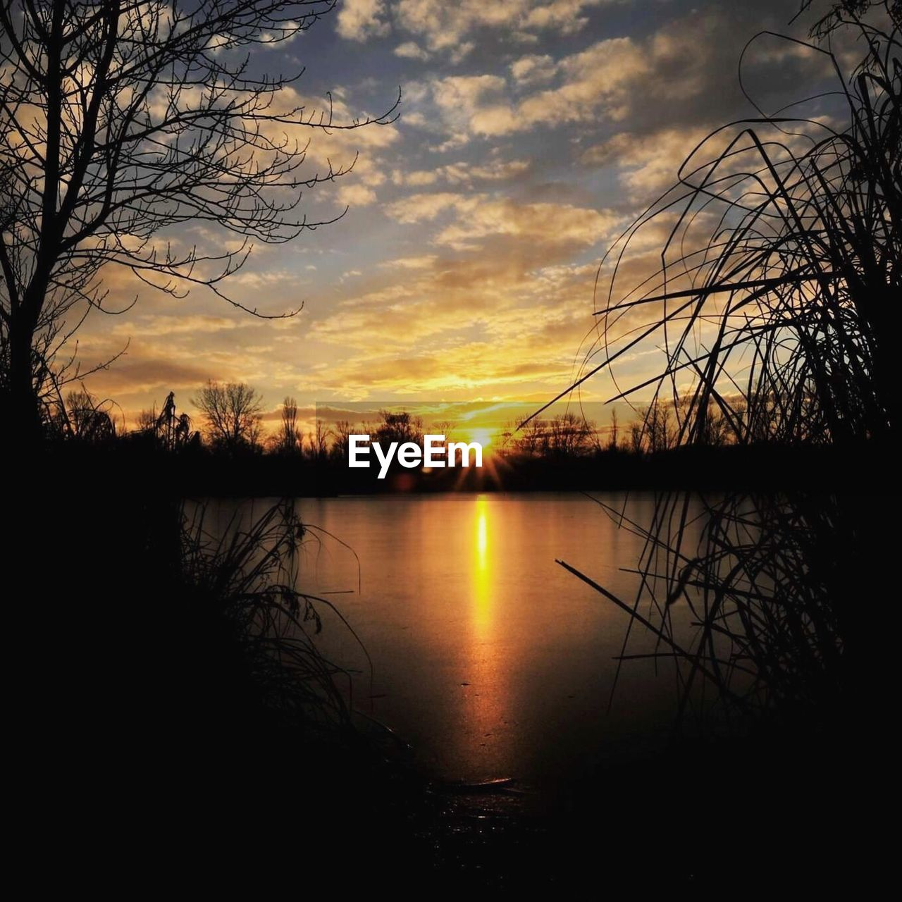 sunset, tranquil scene, scenics, tranquility, beauty in nature, nature, water, reflection, sky, lake, silhouette, orange color, bare tree, tree, no people, idyllic, cloud - sky, majestic, outdoors, sun, branch, day