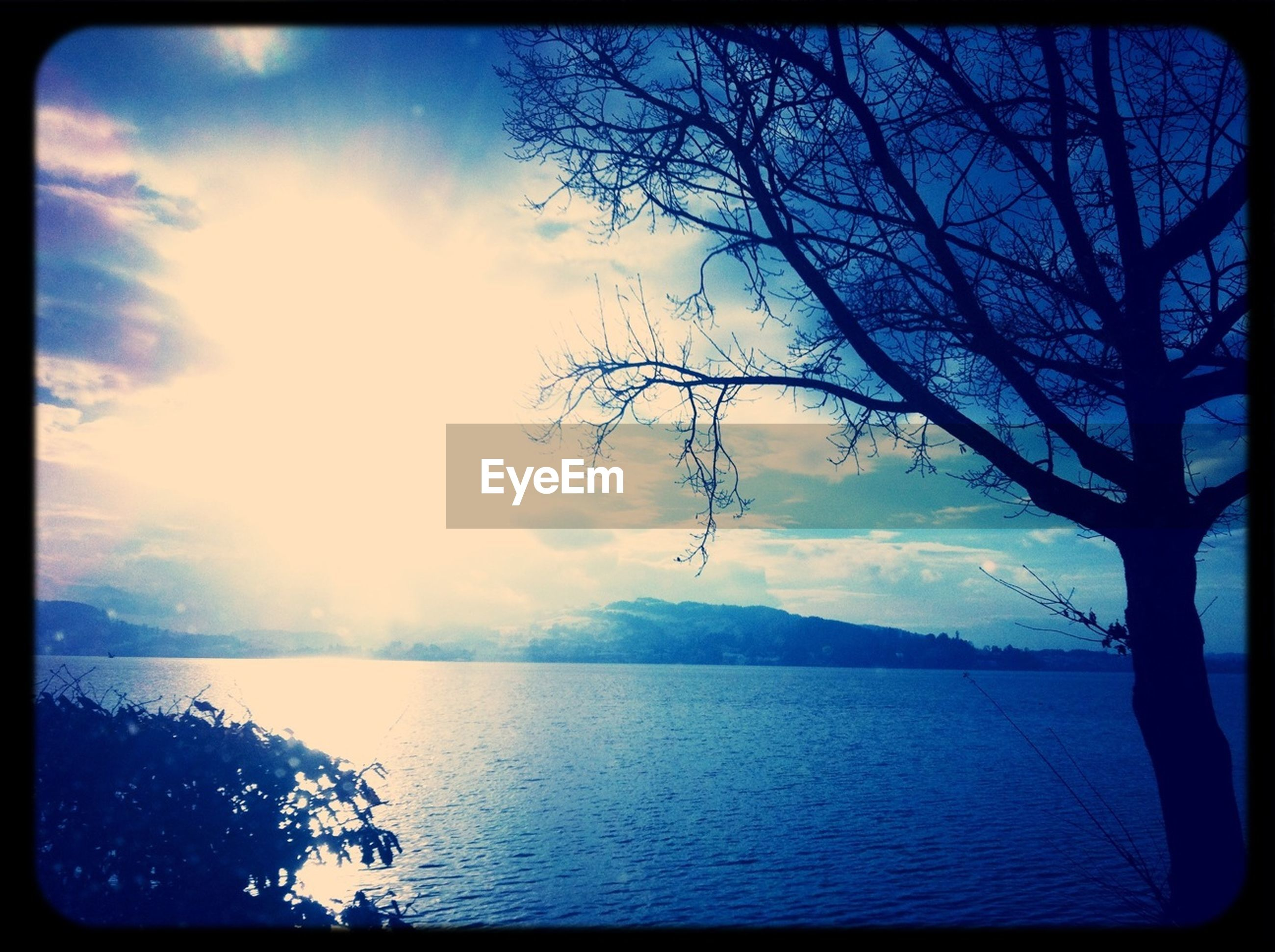 transfer print, water, tranquil scene, tranquility, sky, scenics, auto post production filter, beauty in nature, tree, nature, lake, bare tree, waterfront, cloud - sky, silhouette, reflection, sun, cloud, river, sunlight
