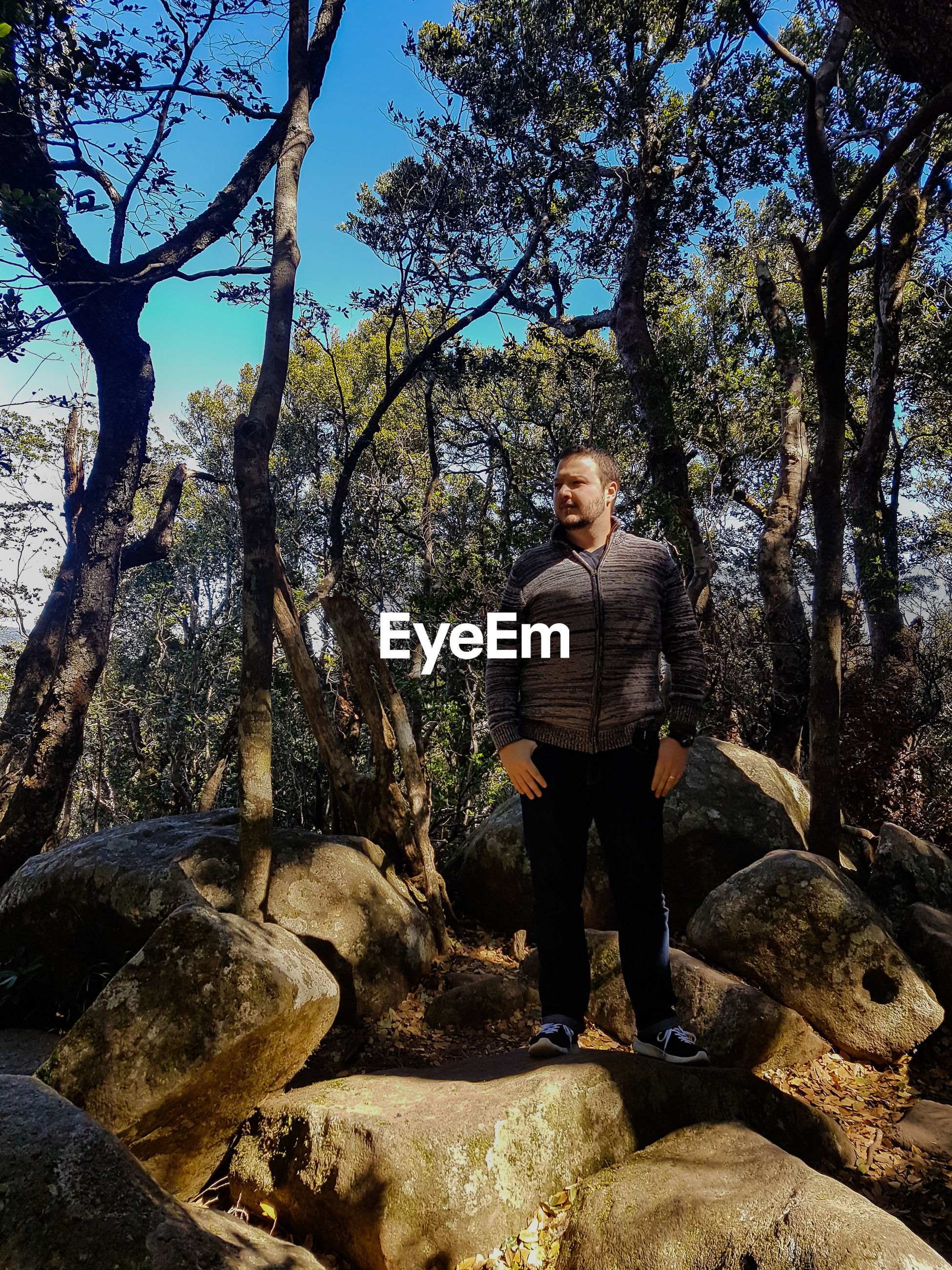 Man standing on rocks against trees