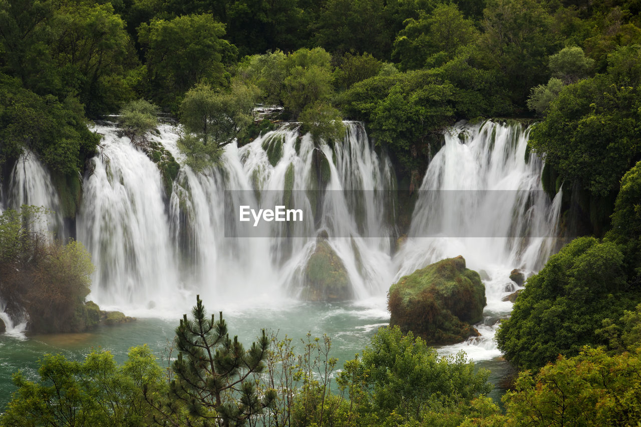water, plant, motion, scenics - nature, tree, beauty in nature, waterfall, long exposure, forest, flowing water, nature, environment, land, blurred motion, no people, growth, power, power in nature, day, flowing, outdoors, rainforest