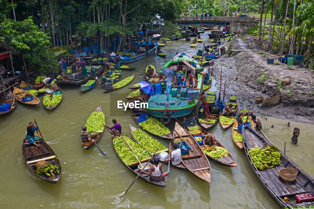 group of people, water, high angle view, real people, transportation, large group of people, nautical vessel, crowd, women, men, mode of transportation, adult, nature, lifestyles, day, river, plant, outdoors
