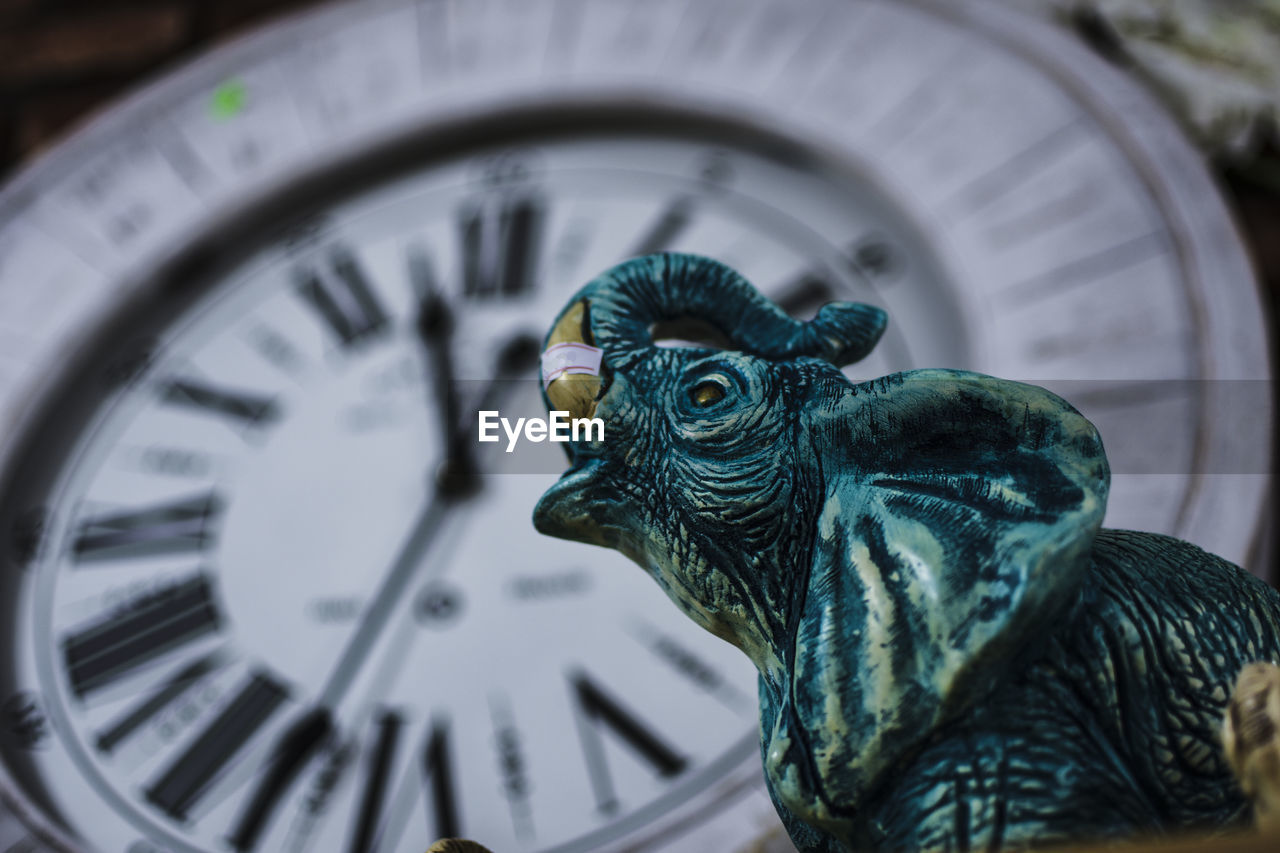 animal, animal themes, no people, clock, time, close-up, bird, vertebrate, focus on foreground, indoors, art and craft, one animal, day, instrument of time, animal wildlife, representation, animal representation, selective focus, clock face, number, minute hand, wheel