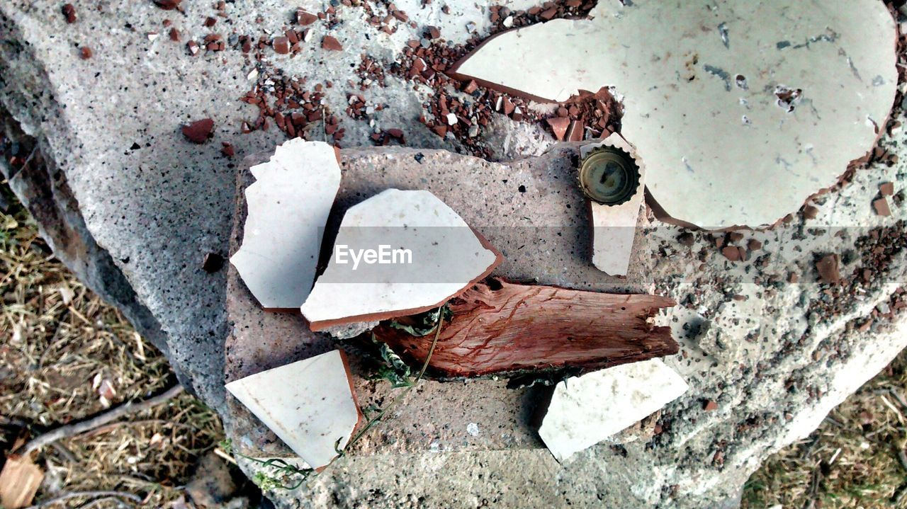 abandoned, damaged, weathered, day, rusty, high angle view, no people, outdoors, close-up, fungus, nature