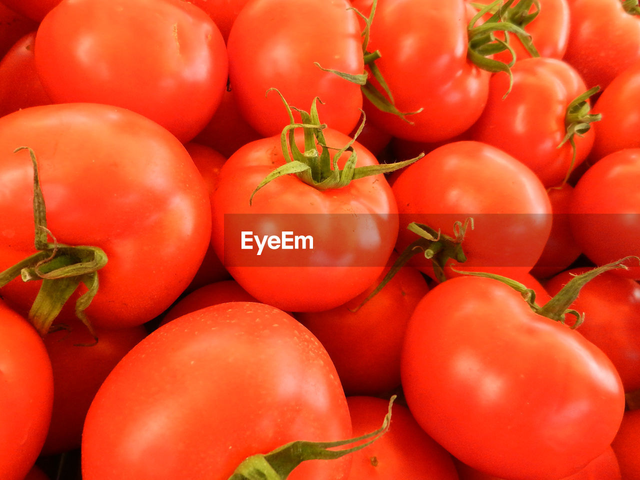 vegetable, food and drink, food, red, healthy eating, freshness, wellbeing, large group of objects, full frame, tomato, close-up, still life, backgrounds, no people, for sale, raw food, fruit, plant stem, market, pepper, sale, ripe