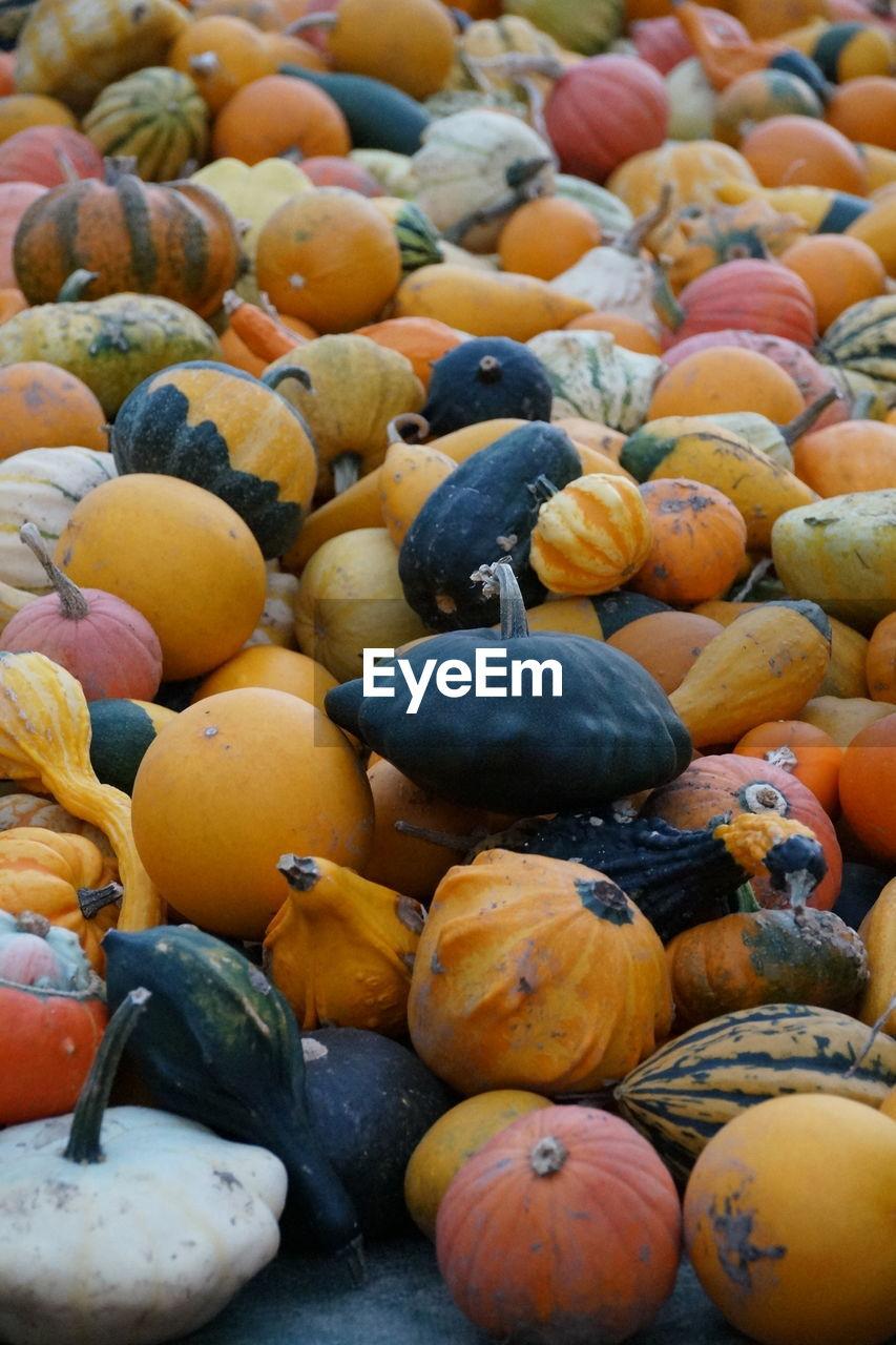 Pumpkins at market for sale