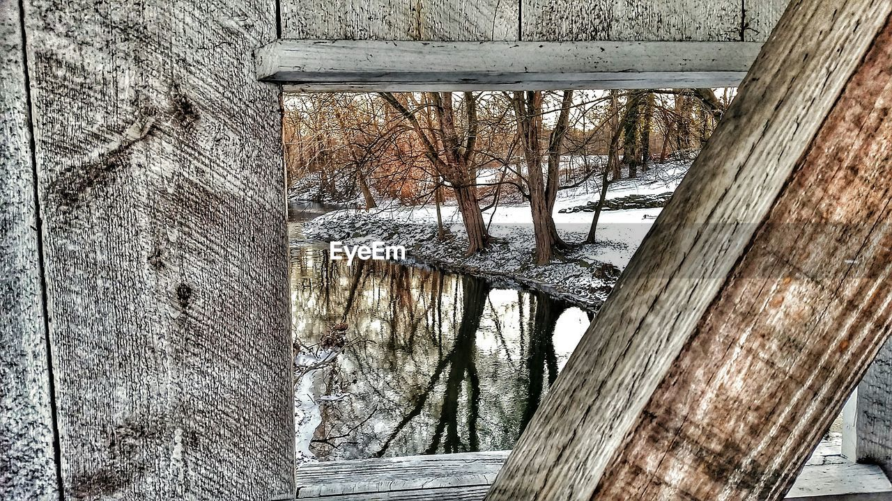 Bare Trees By Lake Seen From Wooden Window