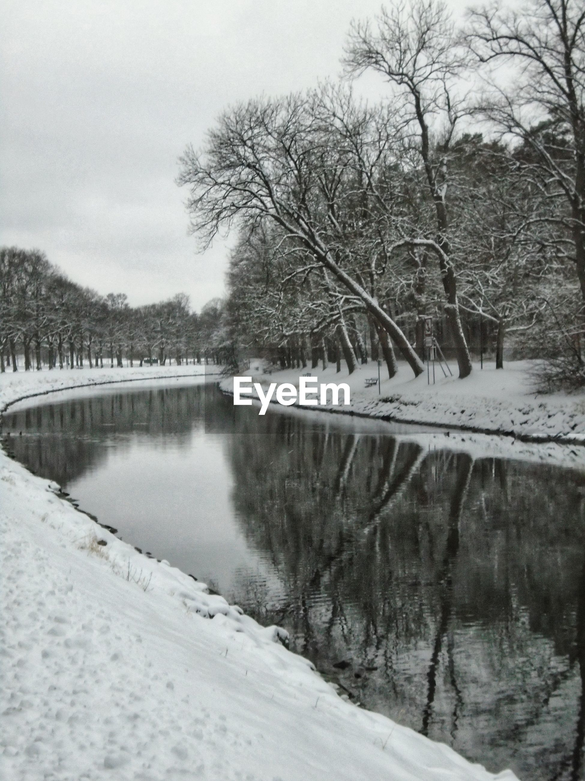 FROZEN LAKE BY TREES AGAINST SKY