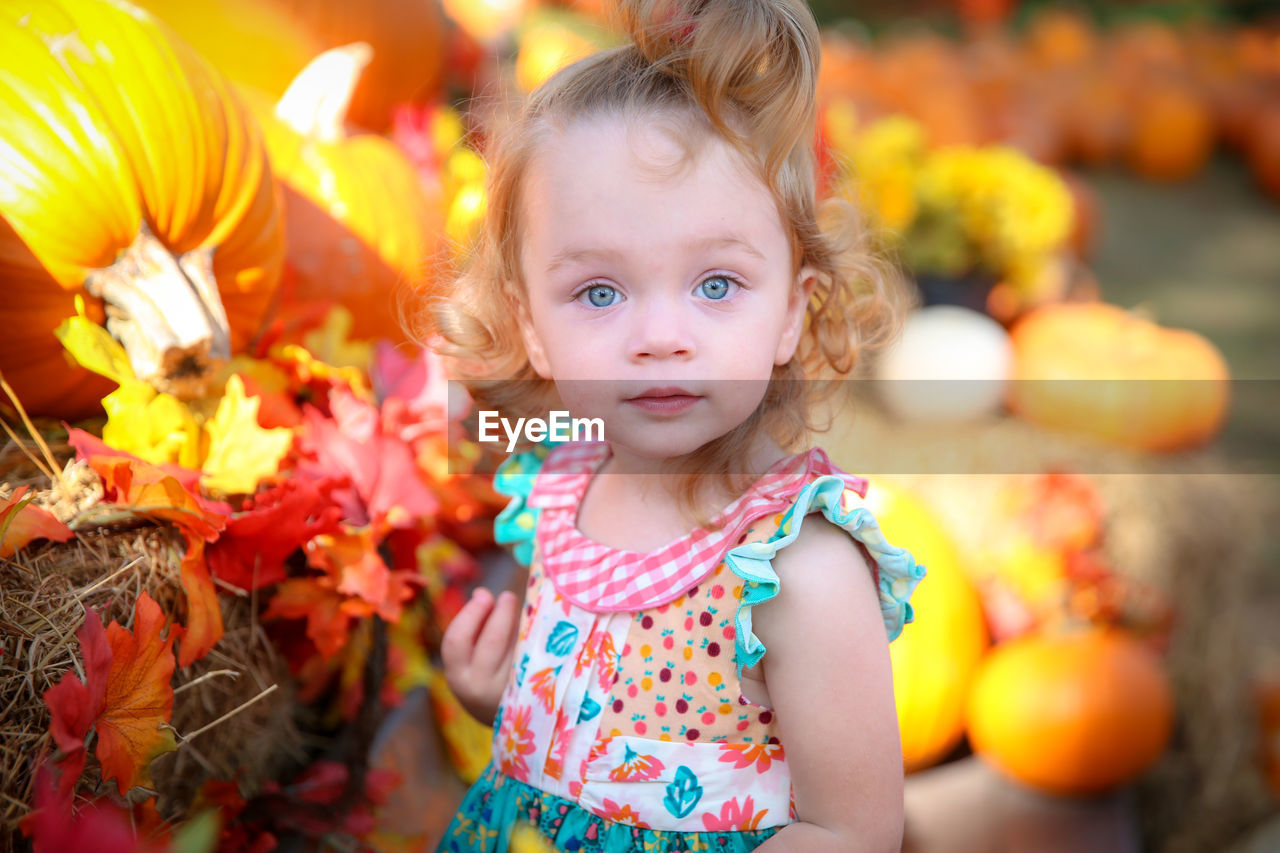 Portrait Of Girl On Bench Amidst Pumpkins At Park During Autumn
