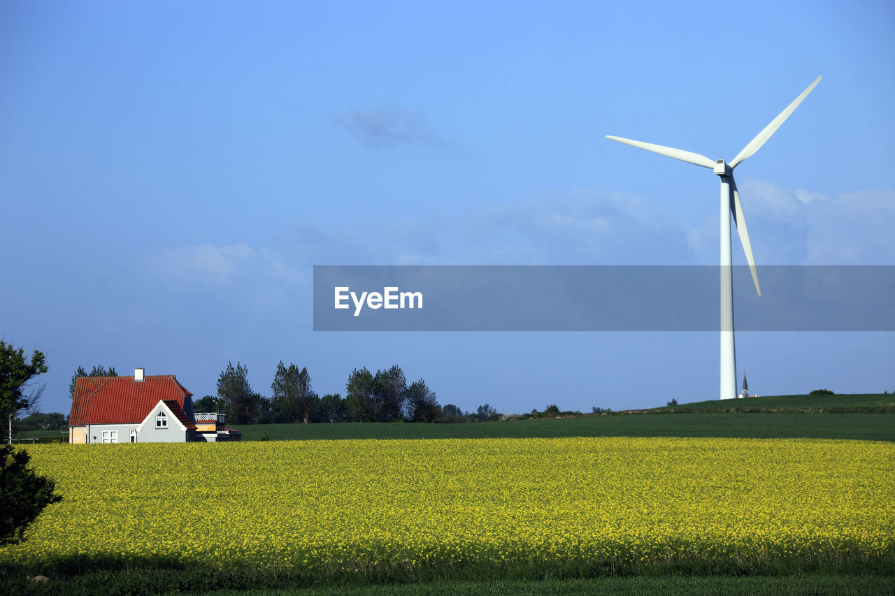 fuel and power generation, renewable energy, environment, turbine, alternative energy, wind turbine, environmental conservation, field, landscape, wind power, land, rural scene, sky, plant, beauty in nature, built structure, architecture, agriculture, building exterior, nature, farm, no people, outdoors