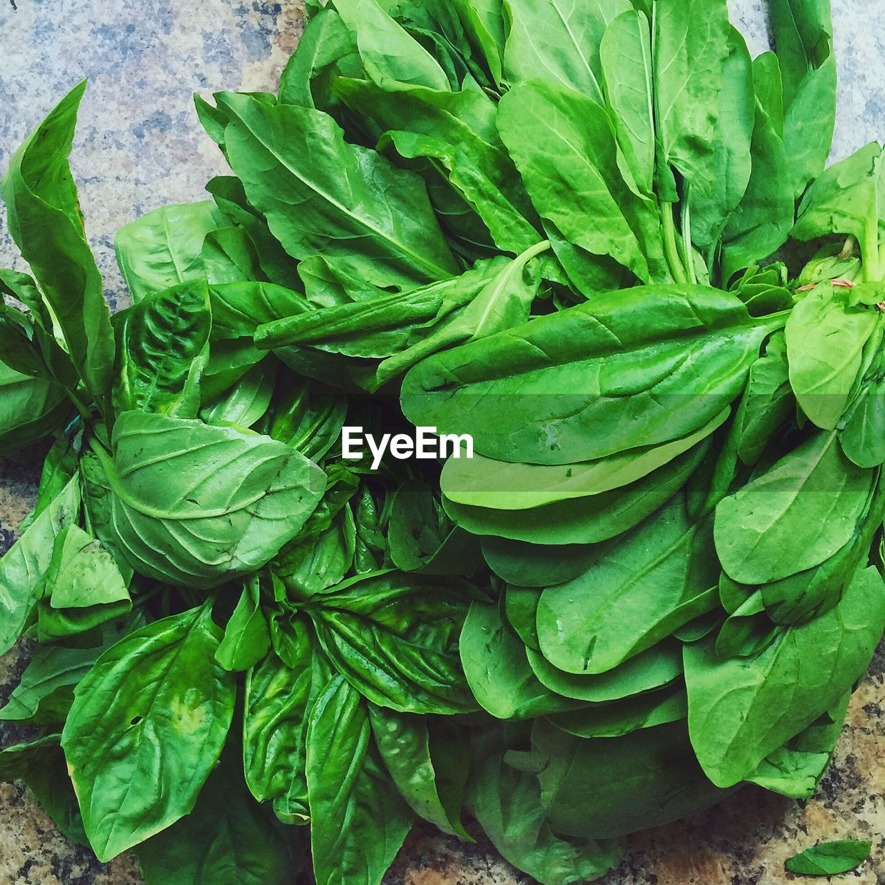 Close-Up Of Leaf Vegetables On Table