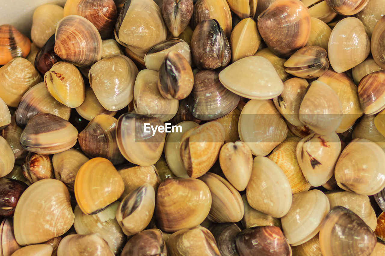 backgrounds, full frame, large group of objects, food and drink, food, wellbeing, freshness, healthy eating, still life, abundance, no people, close-up, indoors, nut, high angle view, market, nut - food, retail, for sale, choice