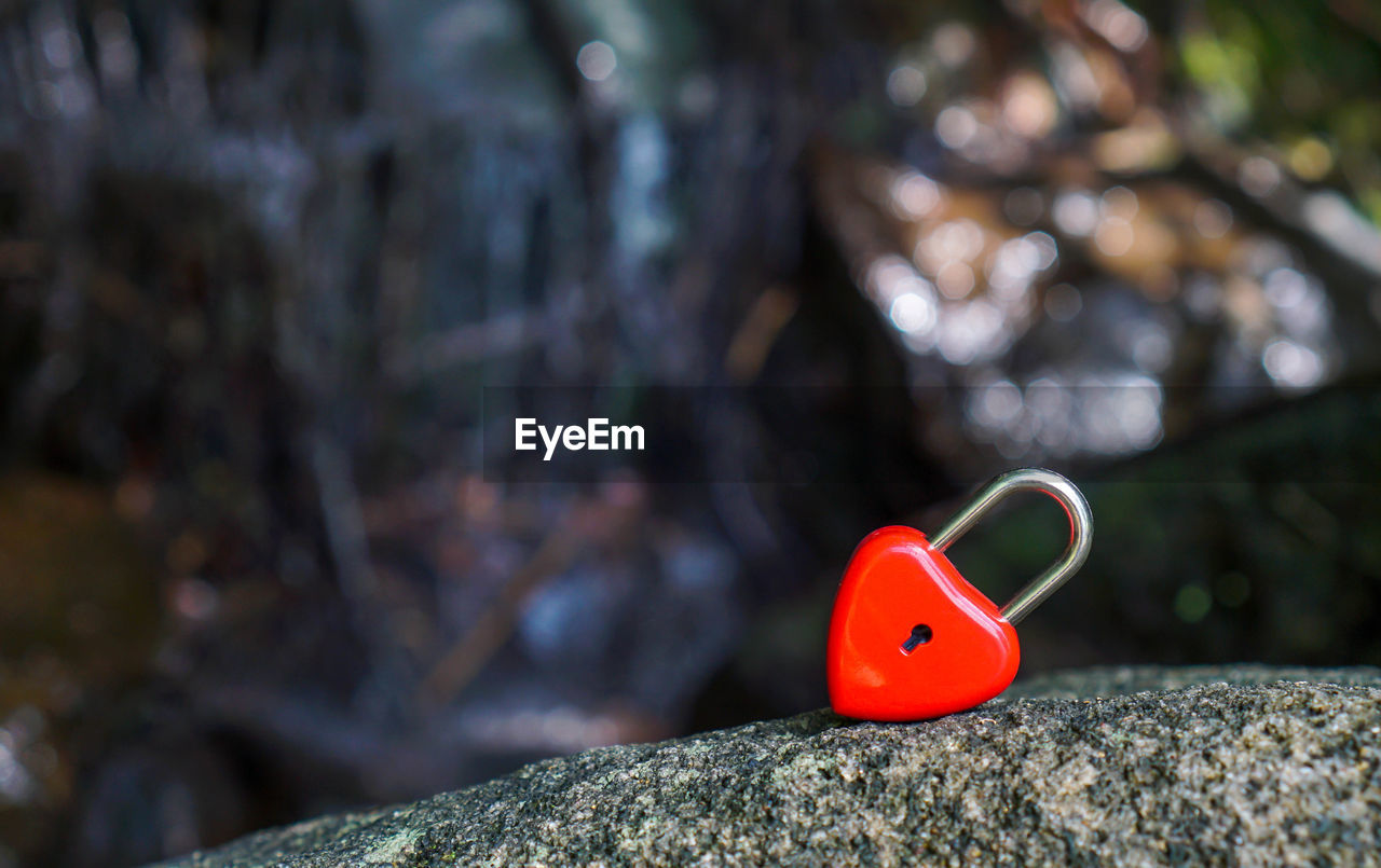 red, rock, rock - object, solid, close-up, no people, focus on foreground, selective focus, nature, day, outdoors, metal, representation, toy, tree, textured, still life, animal representation, tree trunk, trunk