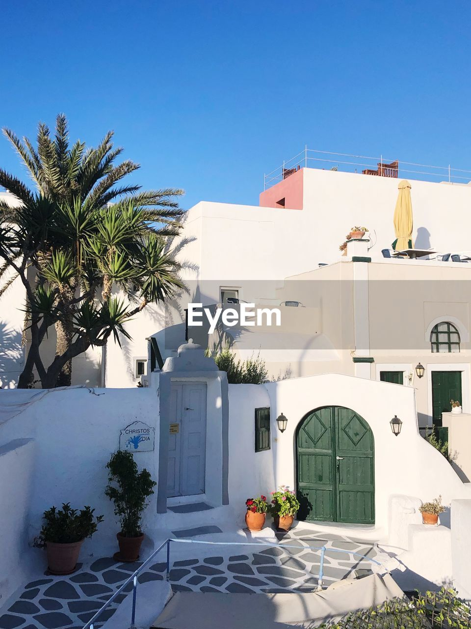 architecture, built structure, building exterior, building, plant, nature, tree, palm tree, tropical climate, sky, sunlight, potted plant, day, clear sky, no people, outdoors, growth, white color, table, house, swimming pool, flower pot