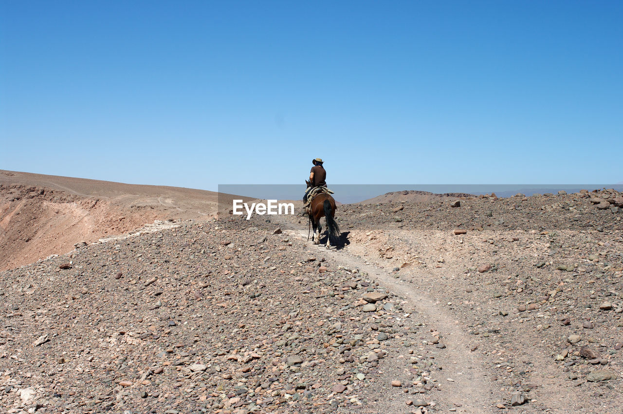 Rear View Of Man Riding Horse On Land Against Clear Blue Sky
