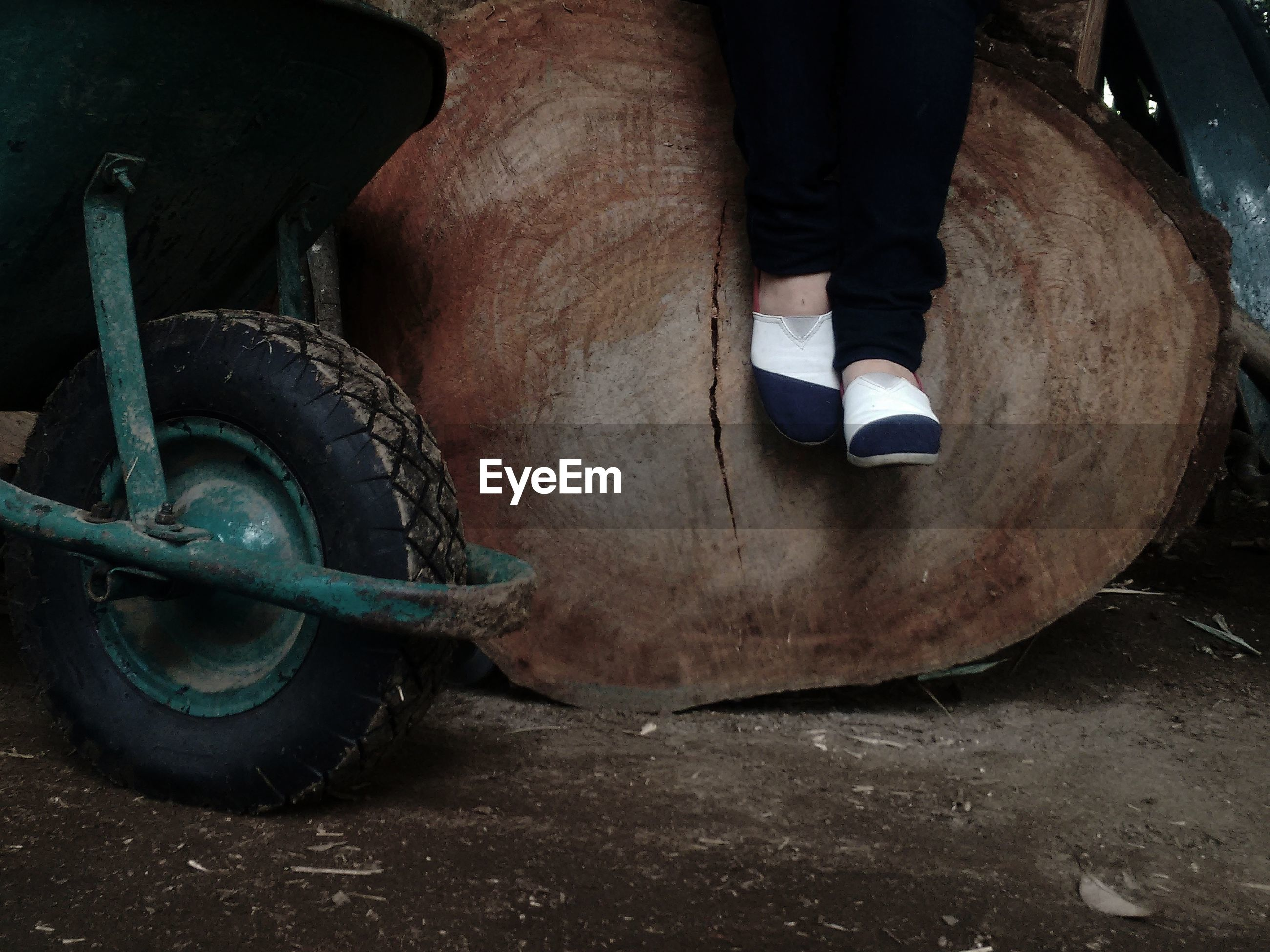 Low section of woman sitting on log by wheelbarrow