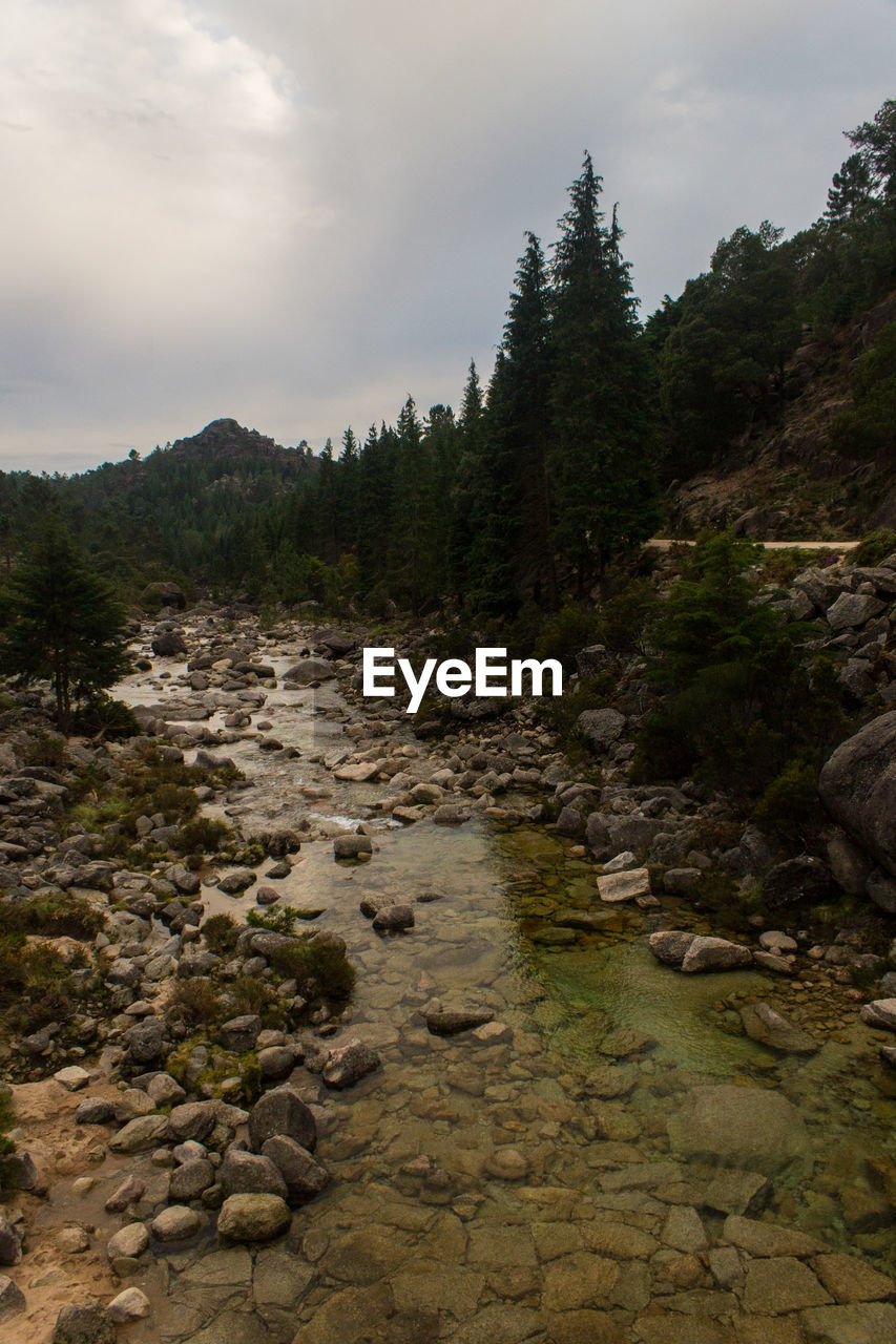 Stream amidst rocks with trees against sky in peneda-geres national park