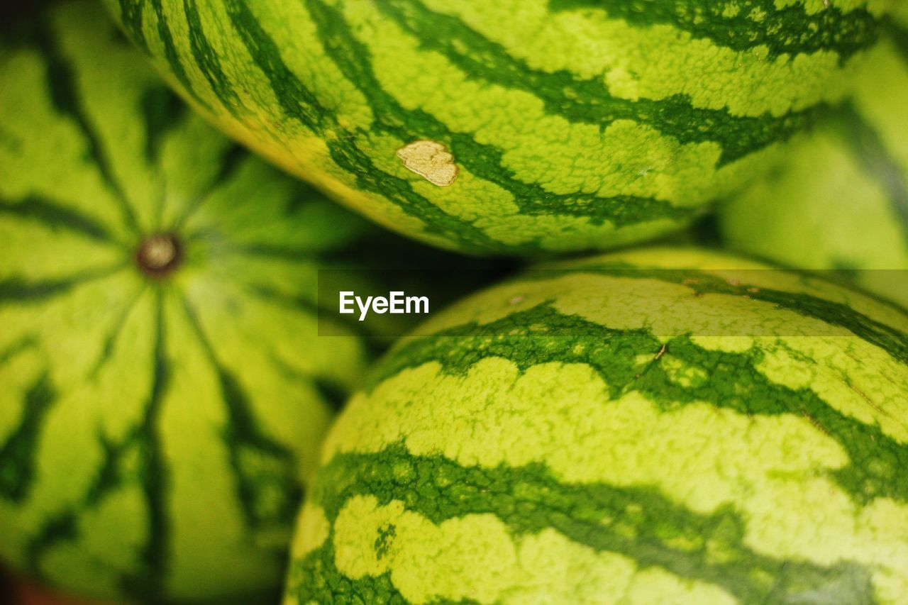 green color, close-up, no people, selective focus, full frame, leaf, freshness, plant part, plant, growth, day, nature, backgrounds, food, food and drink, healthy eating, wellbeing, pattern, outdoors, fruit, leaves