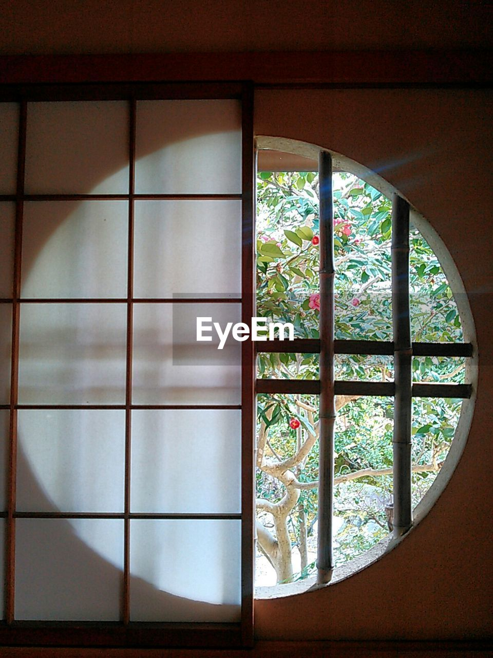 window, indoors, architecture, no people, built structure, day, close-up, tree