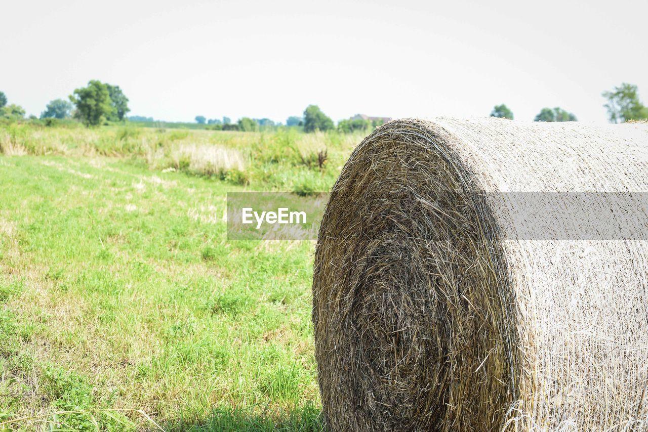 HAY BALES ON FIELD BY FARM AGAINST SKY