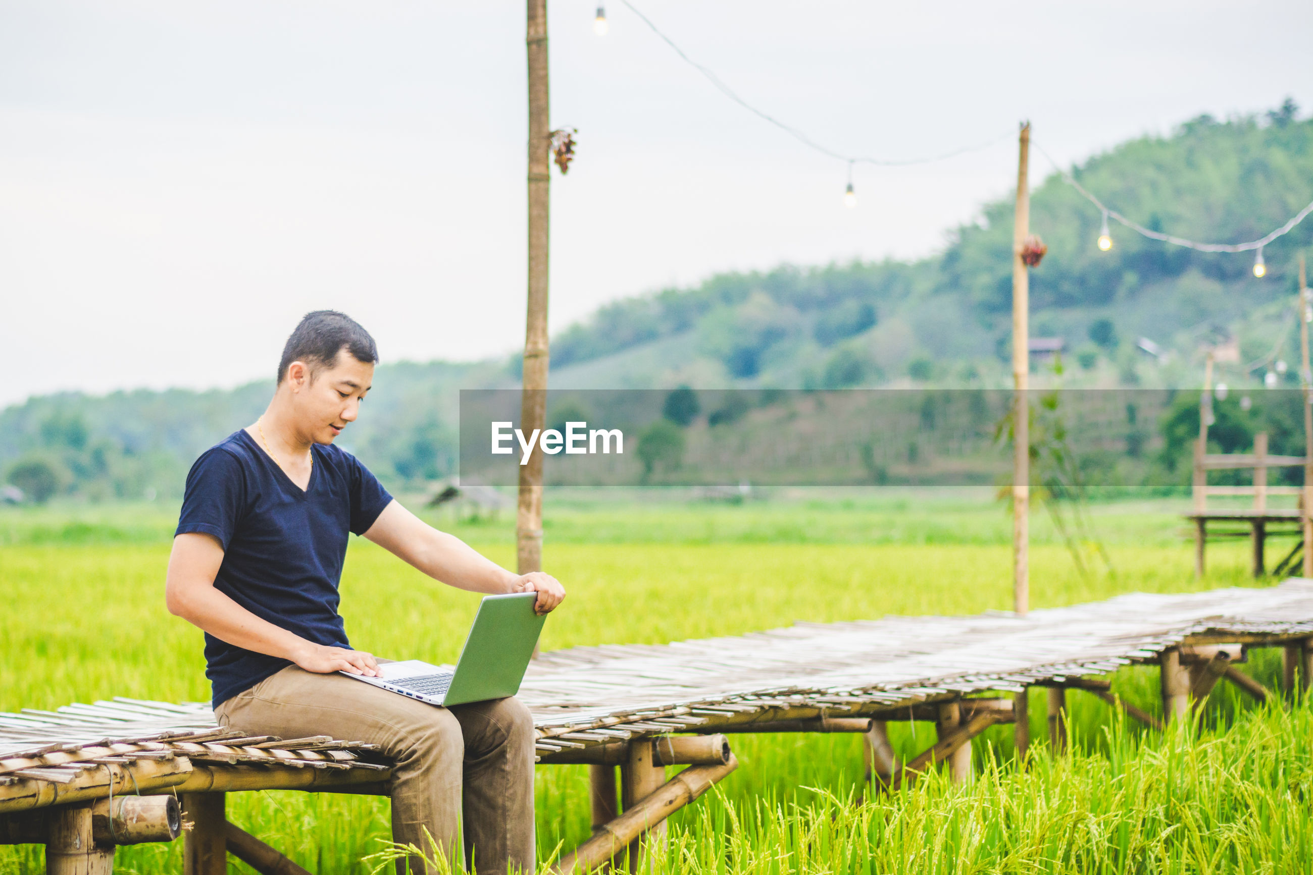 Man using laptop while sitting on boardwalk at rice paddy