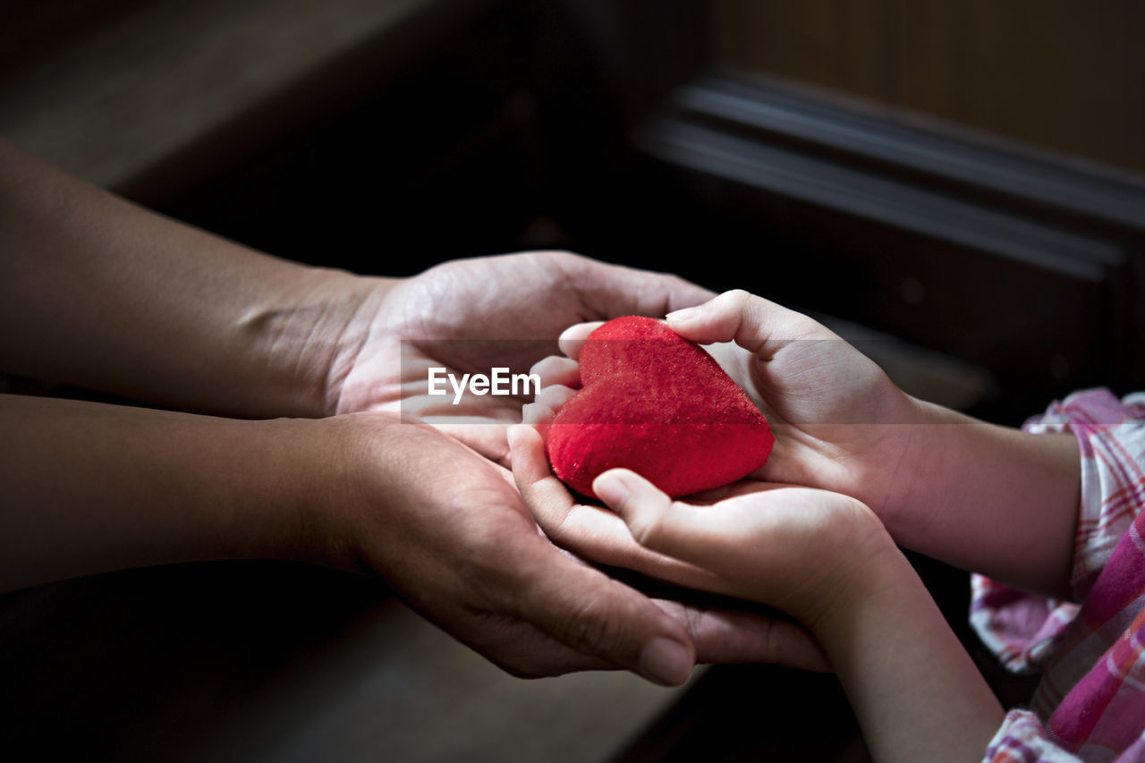 human hand, hand, human body part, red, food, holding, food and drink, real people, one person, fruit, women, freshness, indoors, focus on foreground, healthy eating, close-up, heart shape, lifestyles, wellbeing, finger, human limb