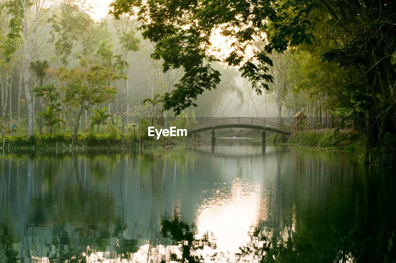 reflection, tree, water, lake, nature, outdoors, no people, scenics, day, built structure, beauty in nature, architecture