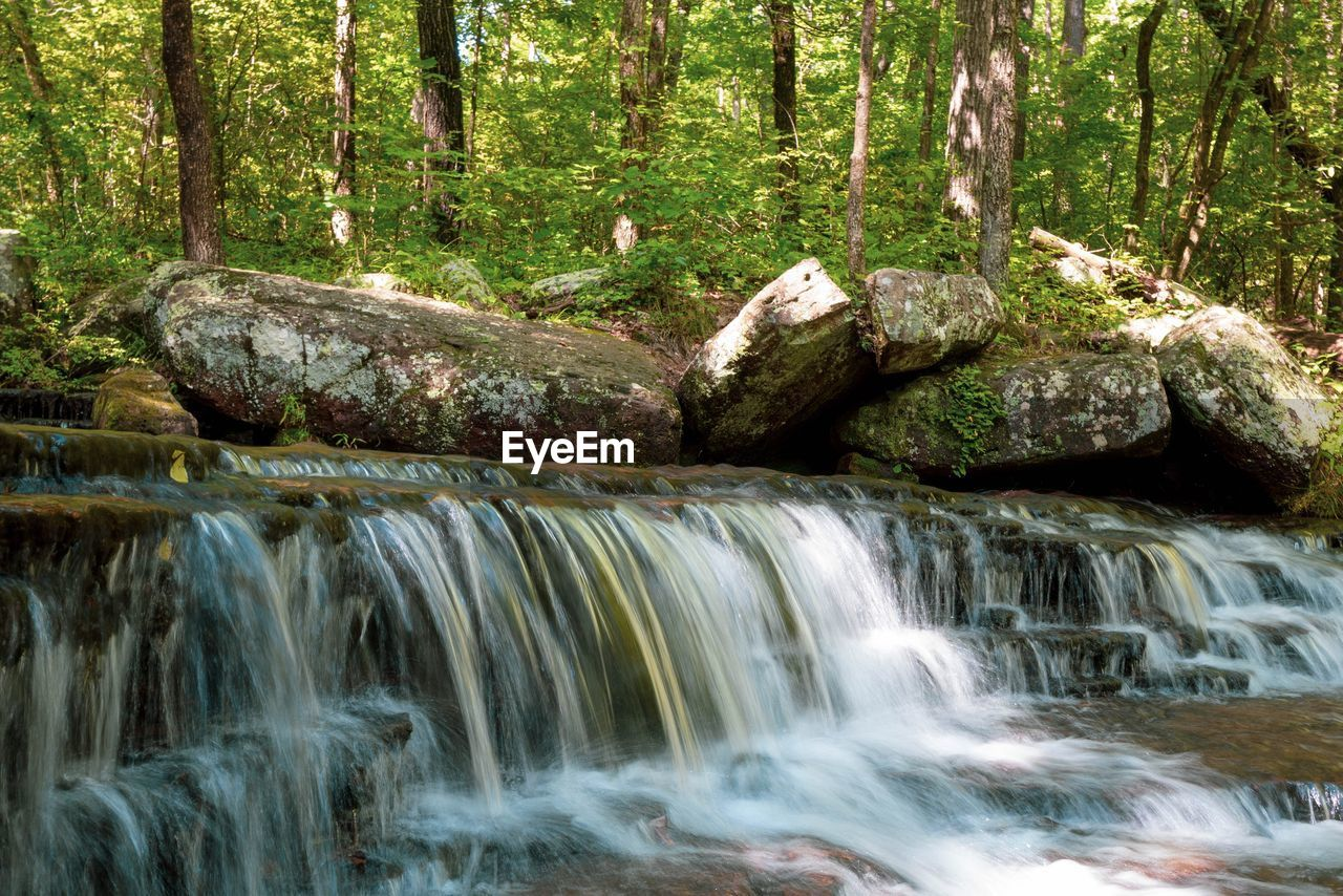 forest, tree, water, motion, scenics - nature, beauty in nature, land, long exposure, plant, no people, nature, flowing water, blurred motion, waterfall, flowing, day, rock, environment, non-urban scene, stream - flowing water, woodland, outdoors, rainforest, power in nature