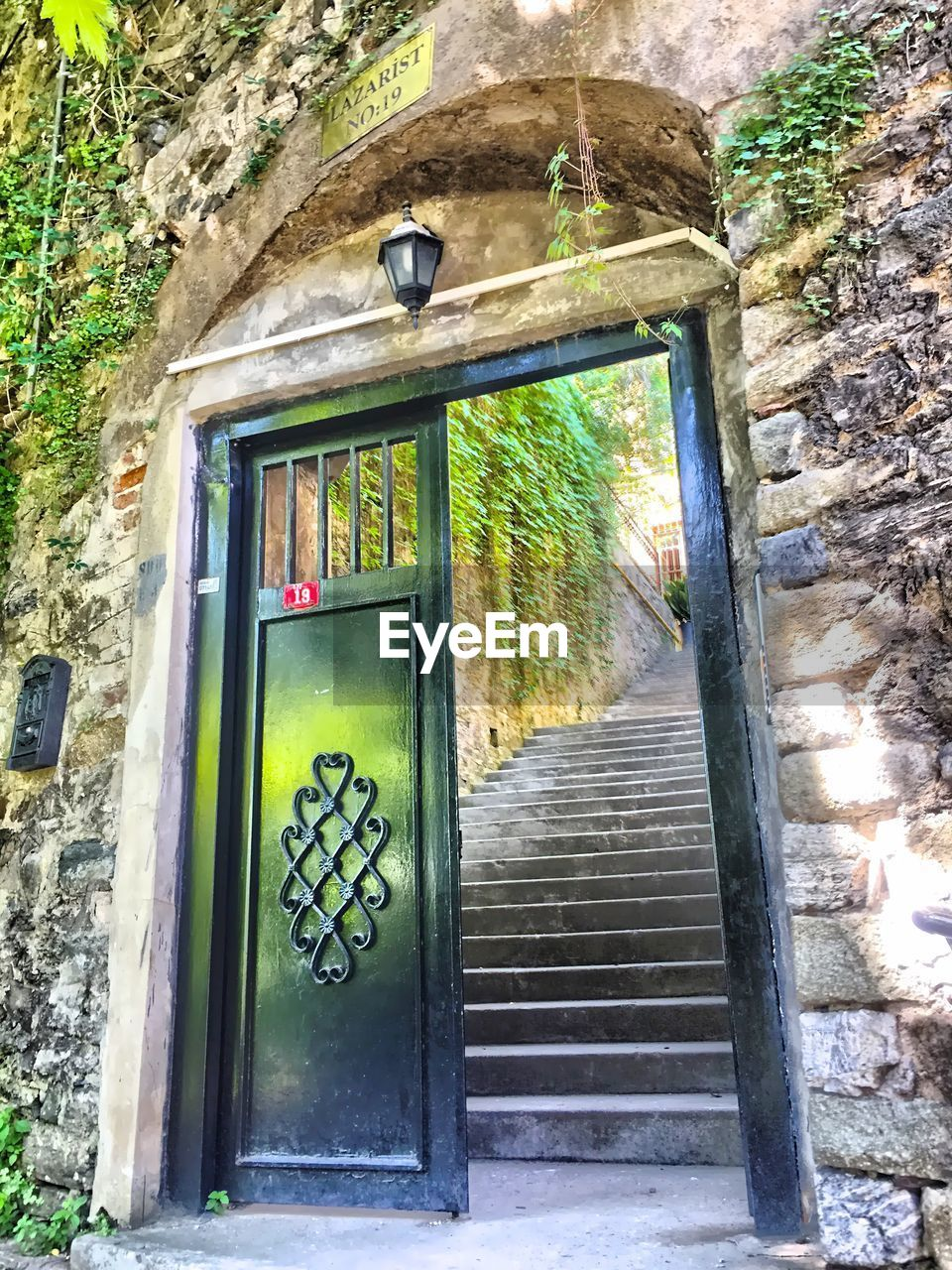 architecture, built structure, window, plant, door, day, no people, building exterior, house, green color, outdoors, growth, open door, ivy, nature, tree