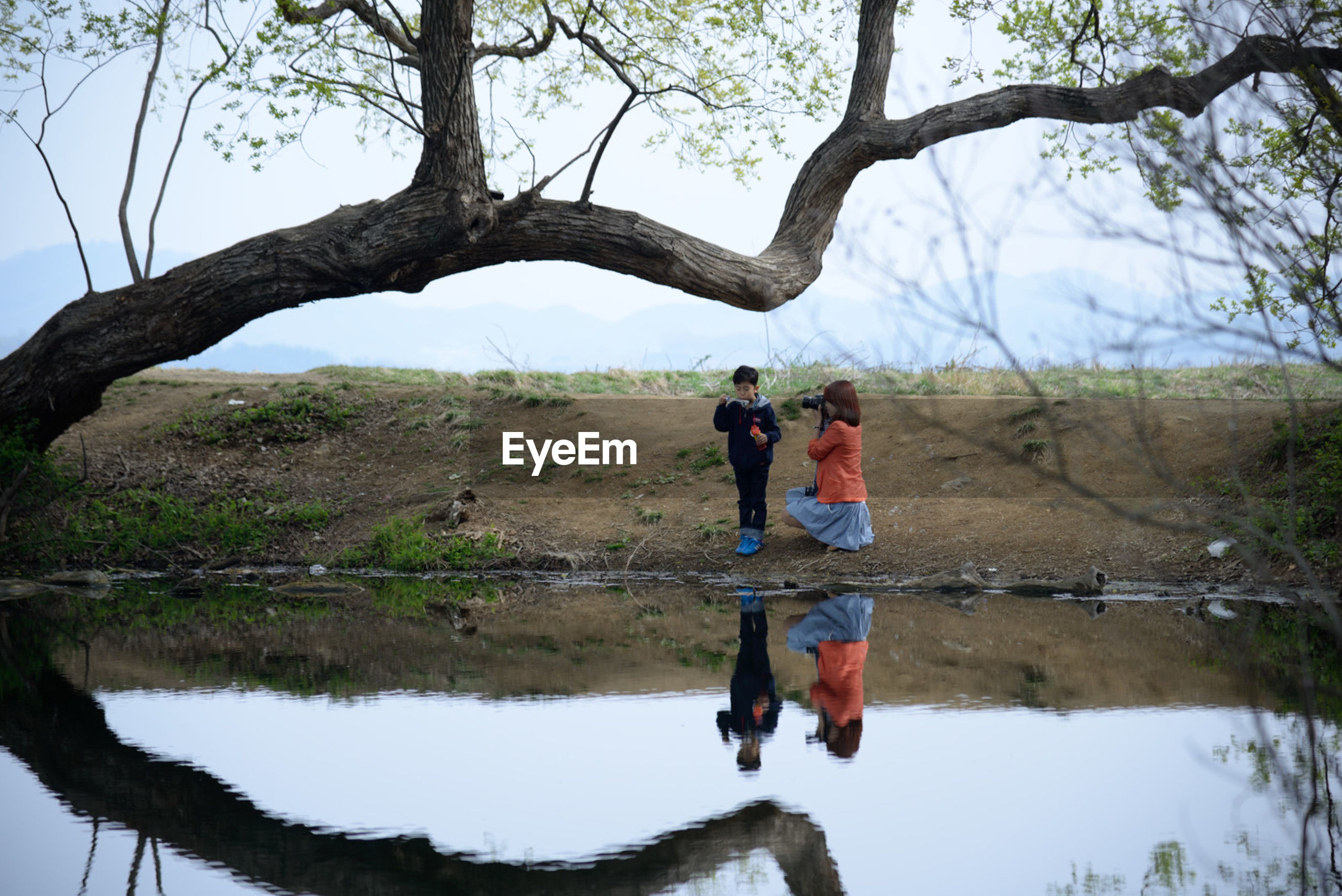 tree, real people, lifestyles, two people, leisure activity, tree trunk, men, full length, outdoors, nature, day, lake, water, women, beauty in nature, sky, people