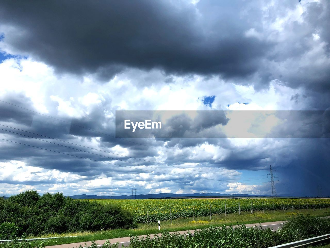 cloud - sky, sky, environment, beauty in nature, plant, field, landscape, land, scenics - nature, tranquil scene, nature, tranquility, no people, day, green color, overcast, growth, tree, non-urban scene, outdoors, ominous