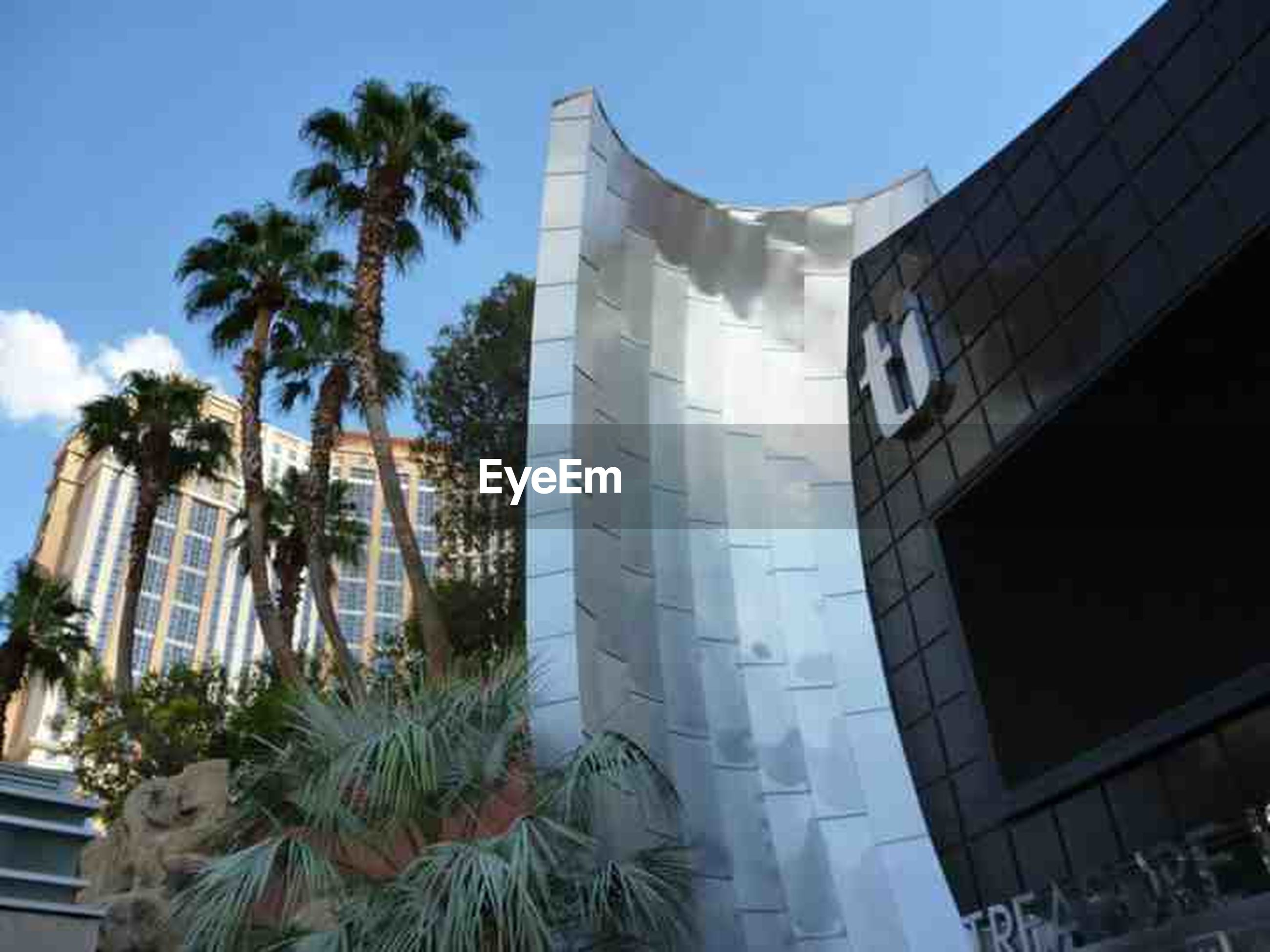 architecture, building exterior, built structure, palm tree, tree, low angle view, building, sky, city, growth, modern, sunlight, blue, day, window, glass - material, tall - high, clear sky, office building, outdoors