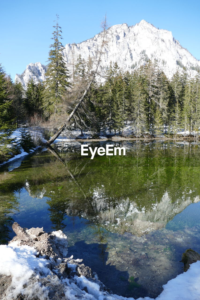 water, mountain, cold temperature, tree, beauty in nature, reflection, plant, winter, snow, nature, sky, lake, scenics - nature, tranquility, day, tranquil scene, no people, non-urban scene, outdoors, snowcapped mountain
