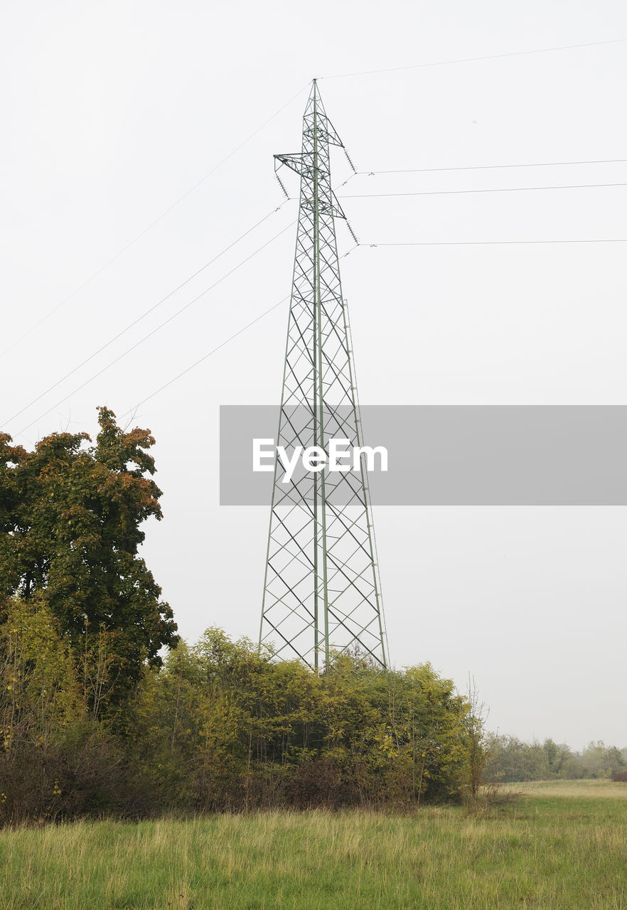 electricity, technology, electricity pylon, cable, plant, fuel and power generation, sky, power supply, tree, power line, connection, low angle view, field, land, nature, green color, growth, no people, landscape, environment, outdoors, electrical component, electrical equipment